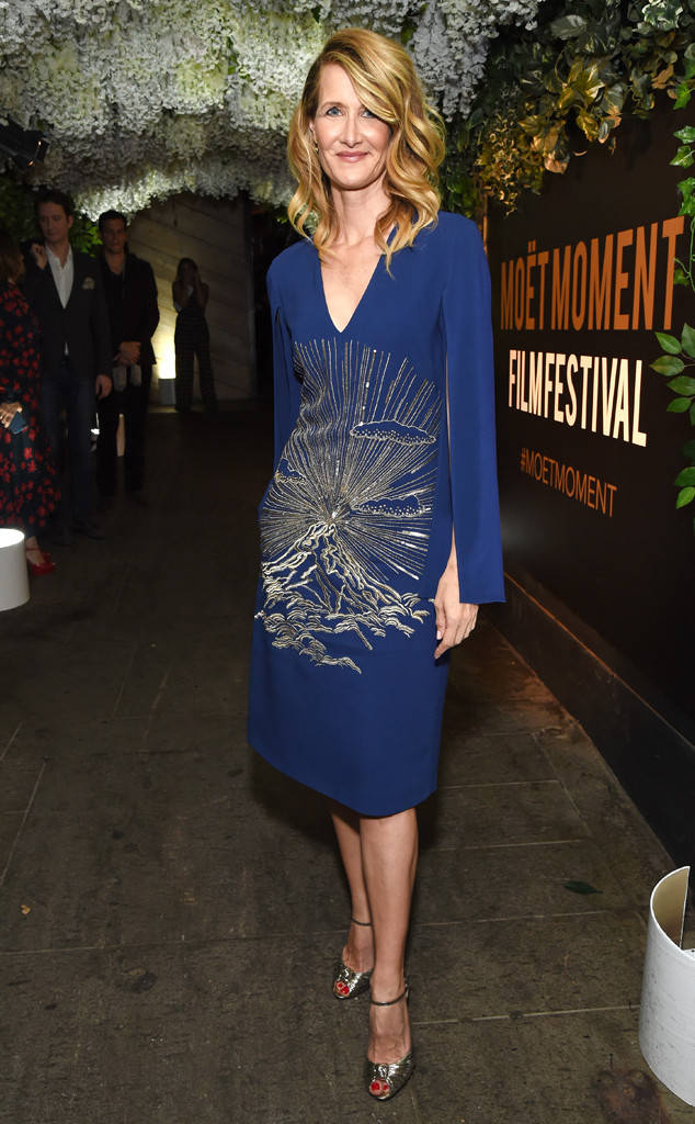 Laura Dern. Image:Michael Kovac/Getty Images for Moet and Chandon