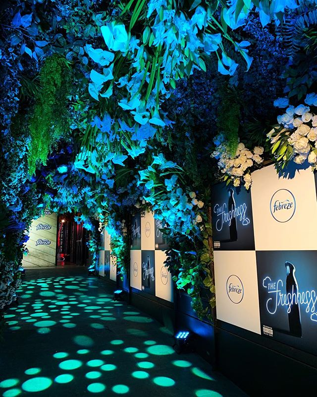 It's Friday we are feeling fresh! @febreze fresh, that is. We had so much fun thanks to Gabrielle and @hwoodgroup providing the production for the Freshness event Wednesday night. Swipe through to see the process as we transformed our favorite walkway in all of Los Angeles. As @hanna_kim called it, our very own superbloom 😂. Thank you @whitesakuras!  #thewotp #freshness #fresh #febreze #poppy #hwood #losangeles #florals #roses #callalillies
