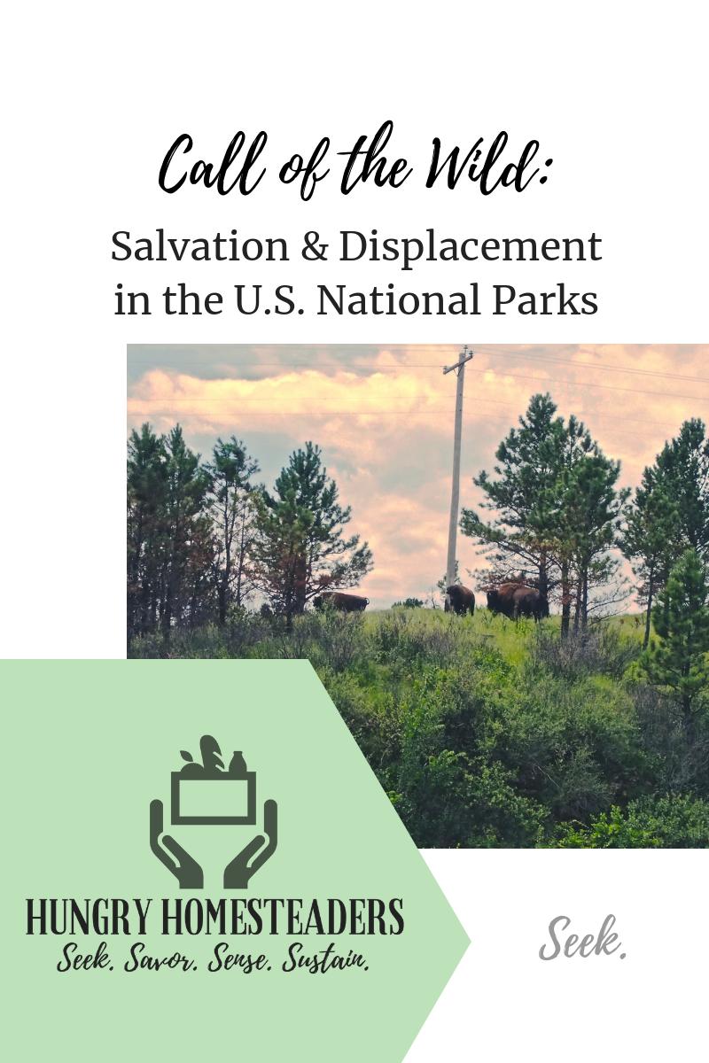 National Parks adventure blog.png