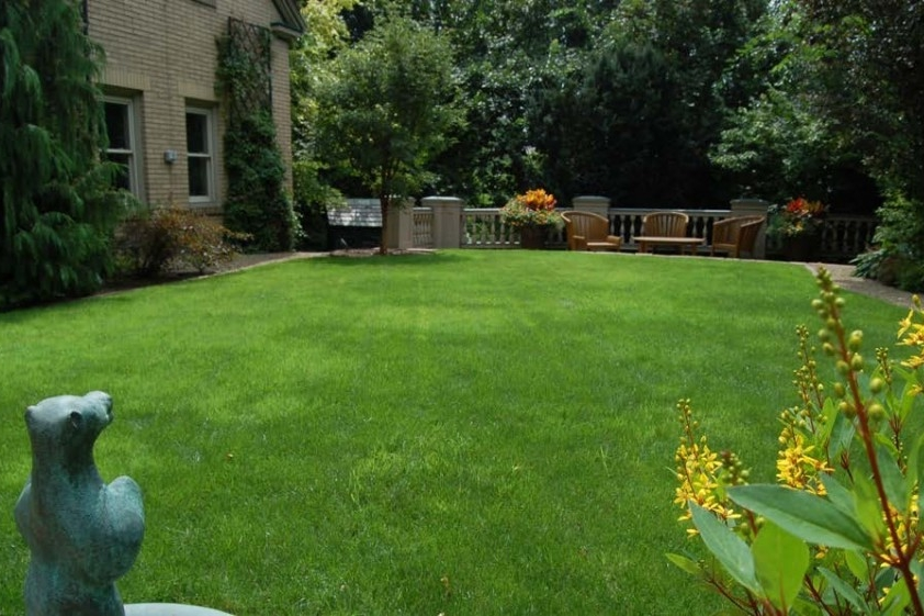 Organic Lawn Care - Gardenalia's Organic Lawn Care services assists in establishing and caring for a garden lawn using organic horticulture, without the use of chemical inputs such as pesticides or artificial fertilisers