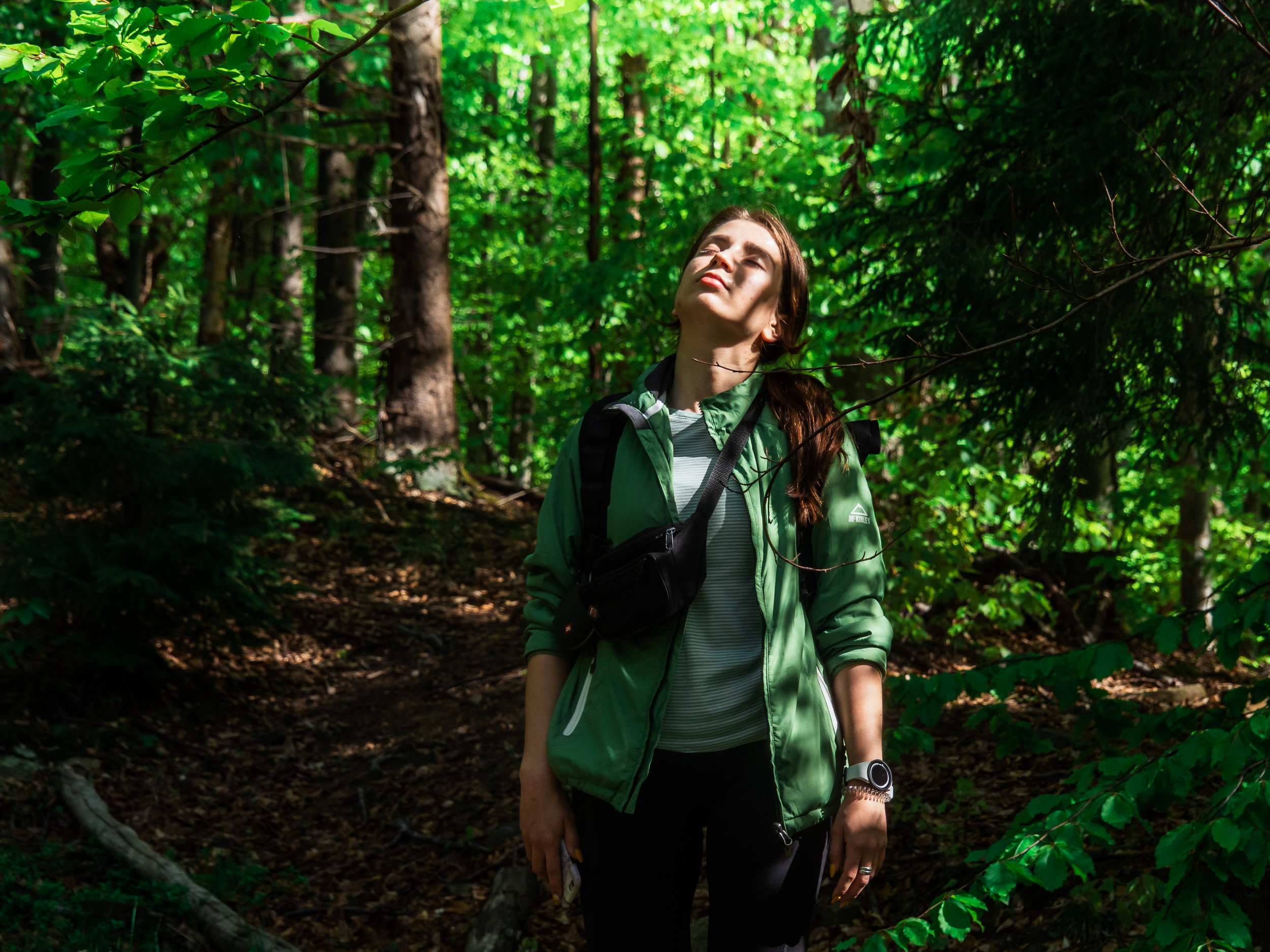Forest Therapy and Immersions