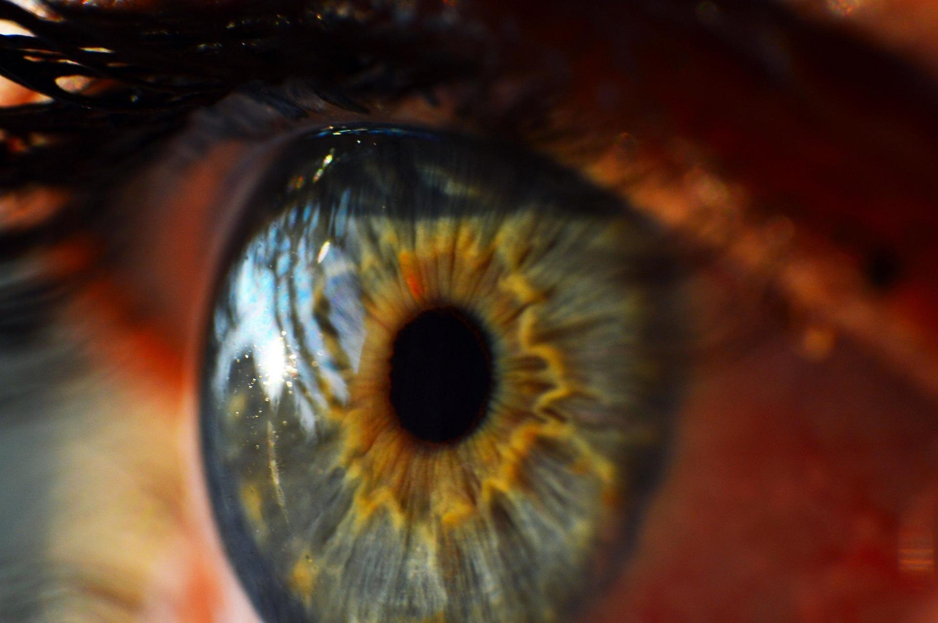 human-eye-995168_1920.jpg