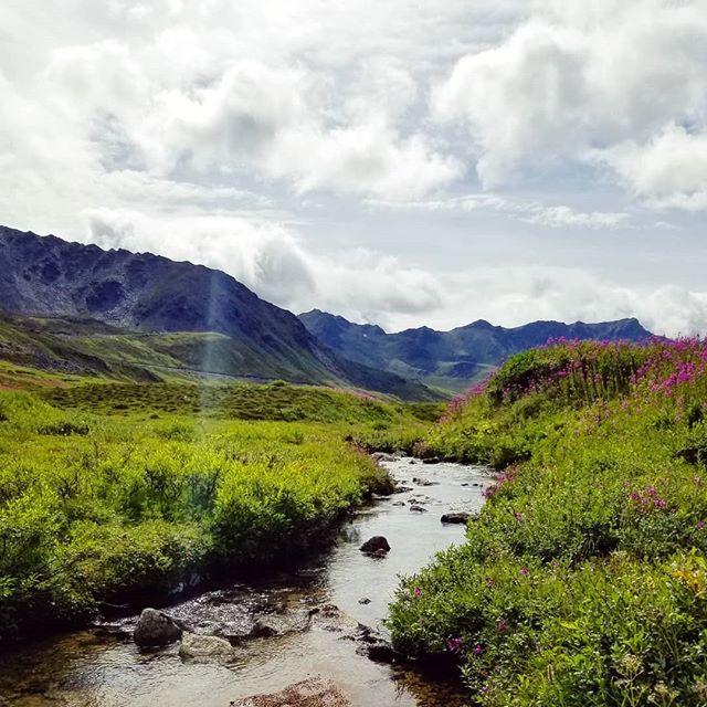 It doesn't get much better than this 🖤  #alaska #sharingalaska #mountainsfordays #mountaindelirium #inspiredbynature #aksummer #motherearth