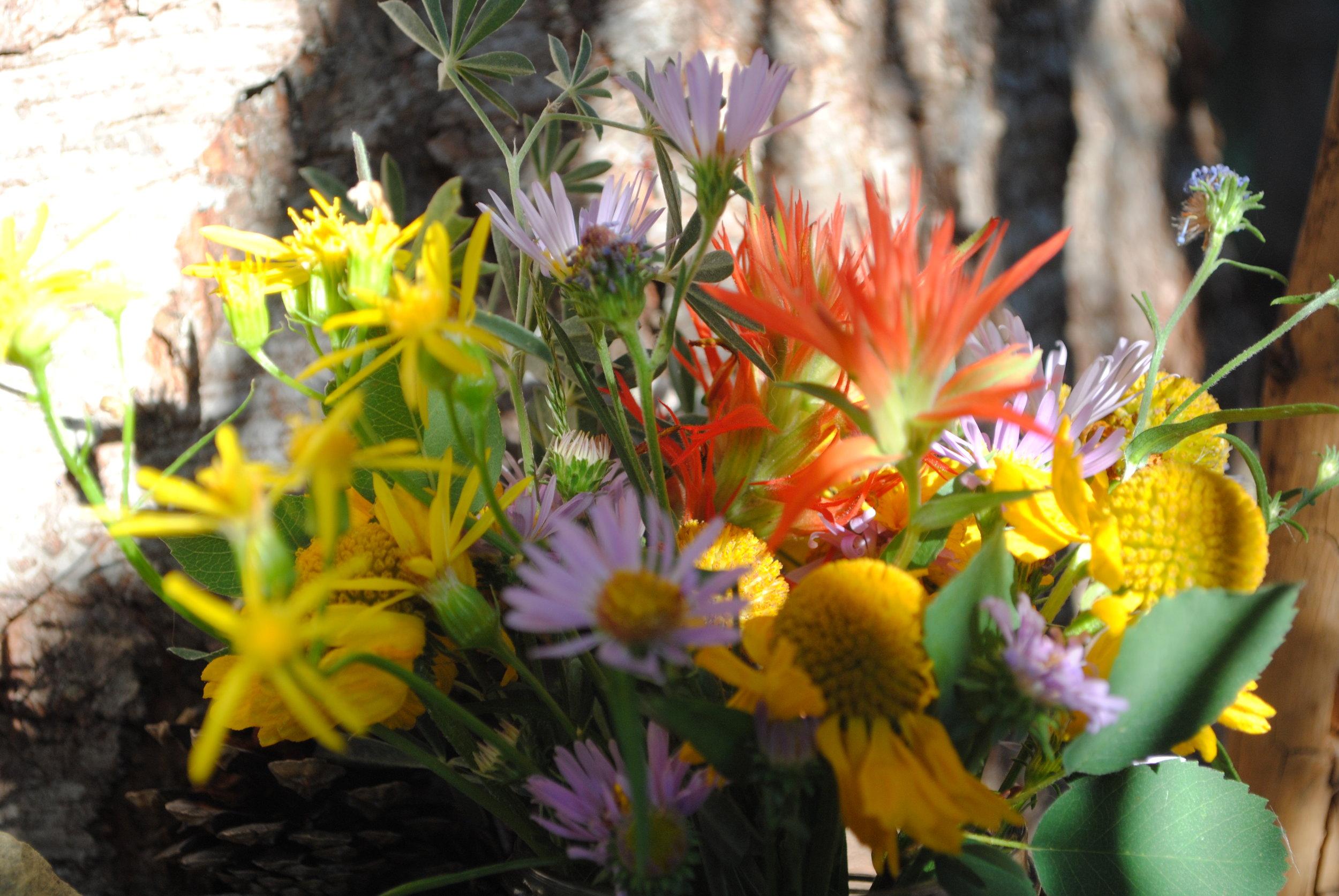 Local flora.