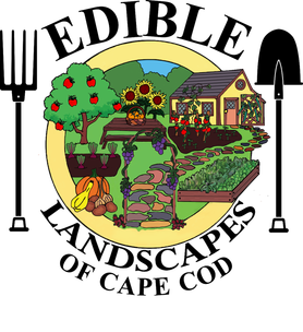 edible logo.png