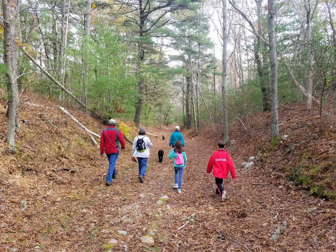 Can Spending Time In Nature Improve >> Your Kids Need Nature And So Do You The Mental And Physical Health