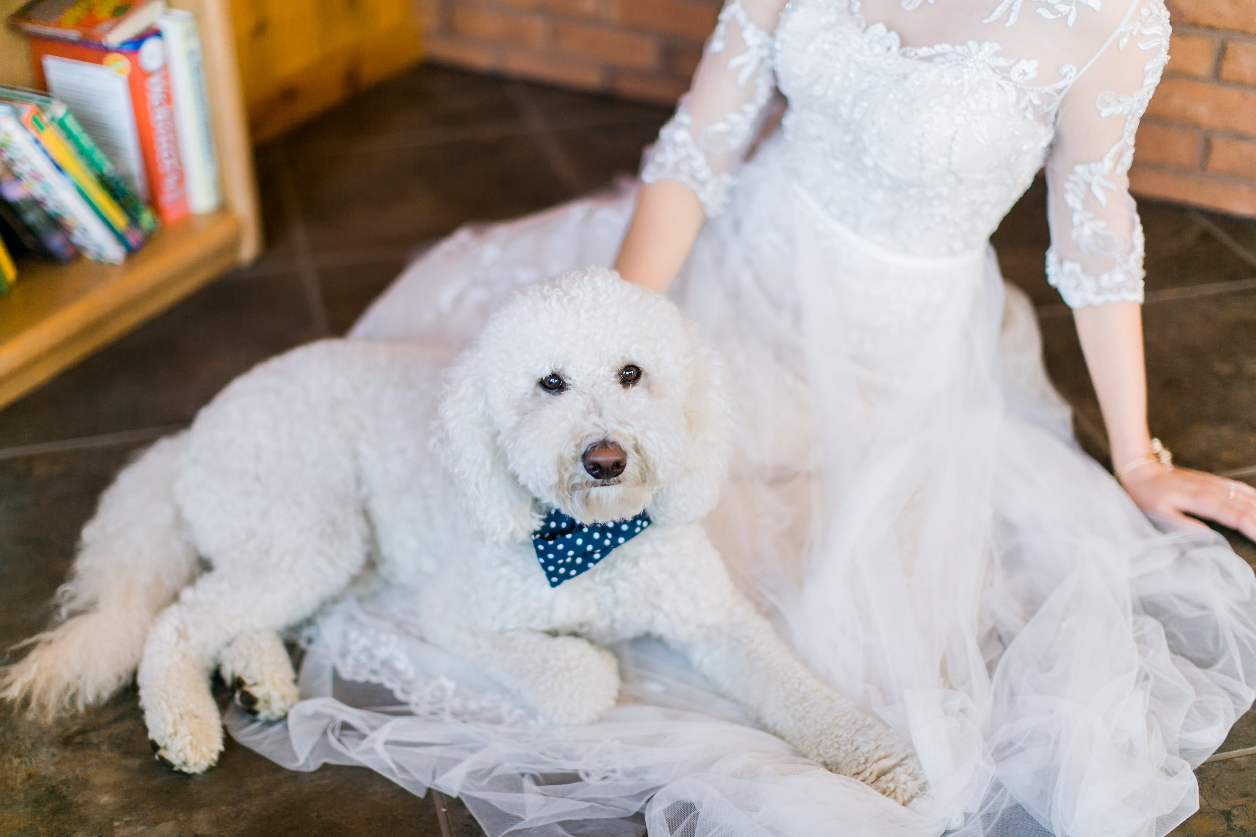 MissouriRusticWedding_StLouisWeddingPhotographer_AliciaDan_CatherineRhodesPhotography-893-Edit.jpg