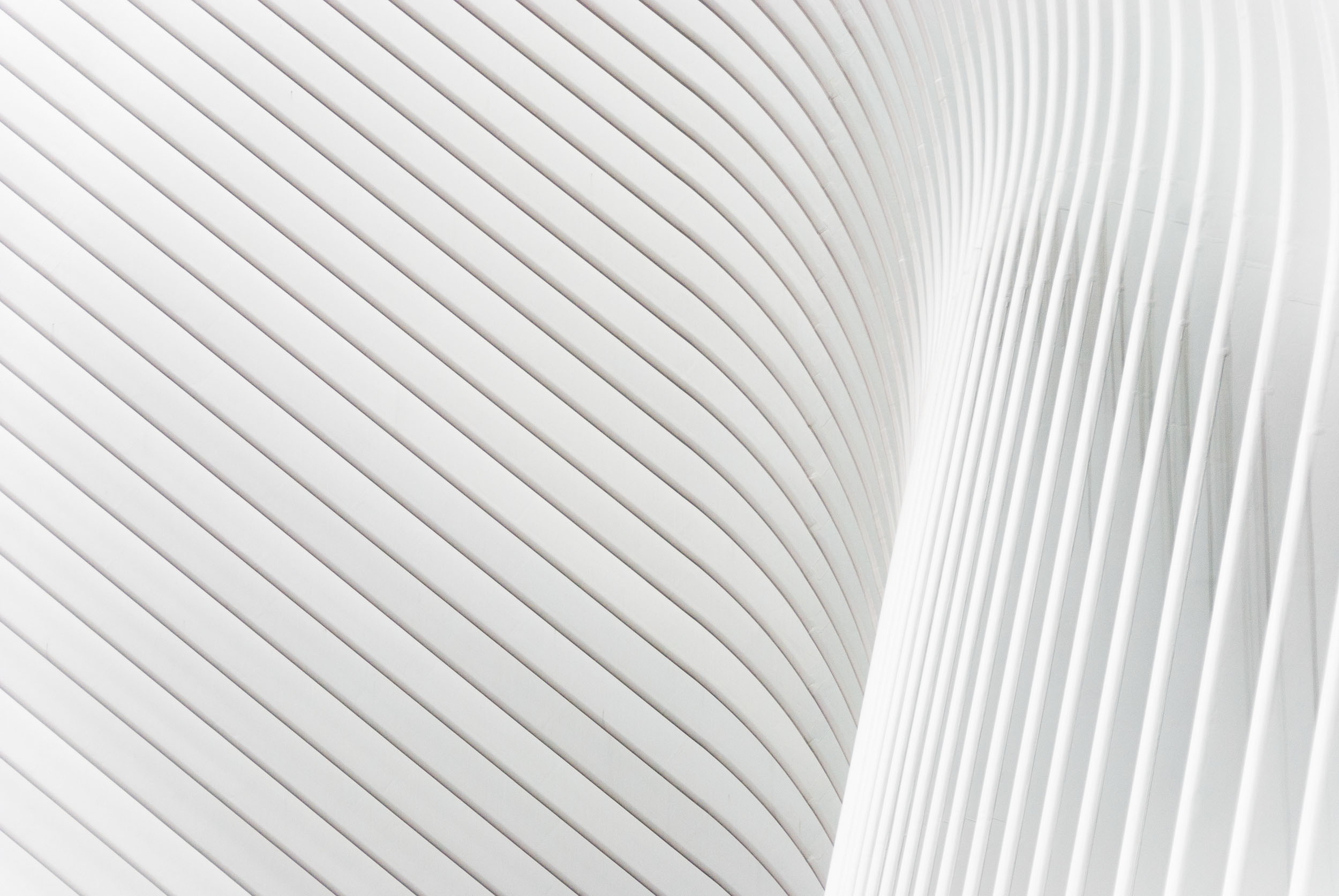 """The """"Oculus"""", designed by Santiago Calatrava, forms part of the World Trade Center site in New York."""