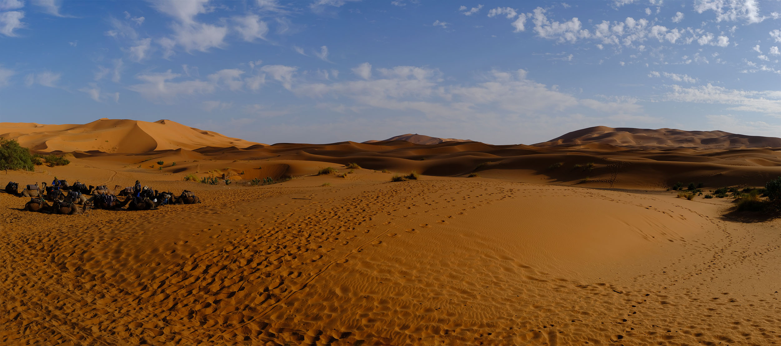 Landscape of Morocco's Erg Chebbi at sunset.
