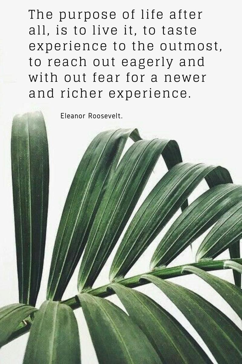 Purpose Motivation quote