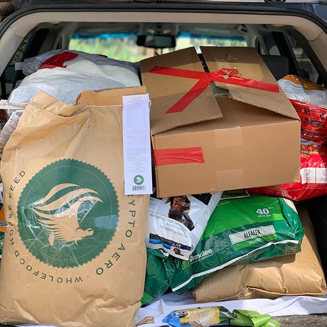 Thank you #codysfriendscharity #rescuefoodbank for feeding most of our dogs and helping with some of our parrot and farm crew. You guys are lifesavers literally 😘