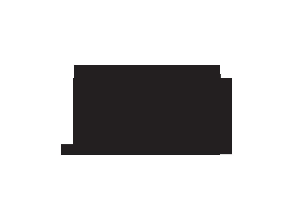 WSC_block_logo_black.png