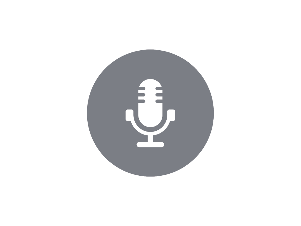 Audio Icon V2.png