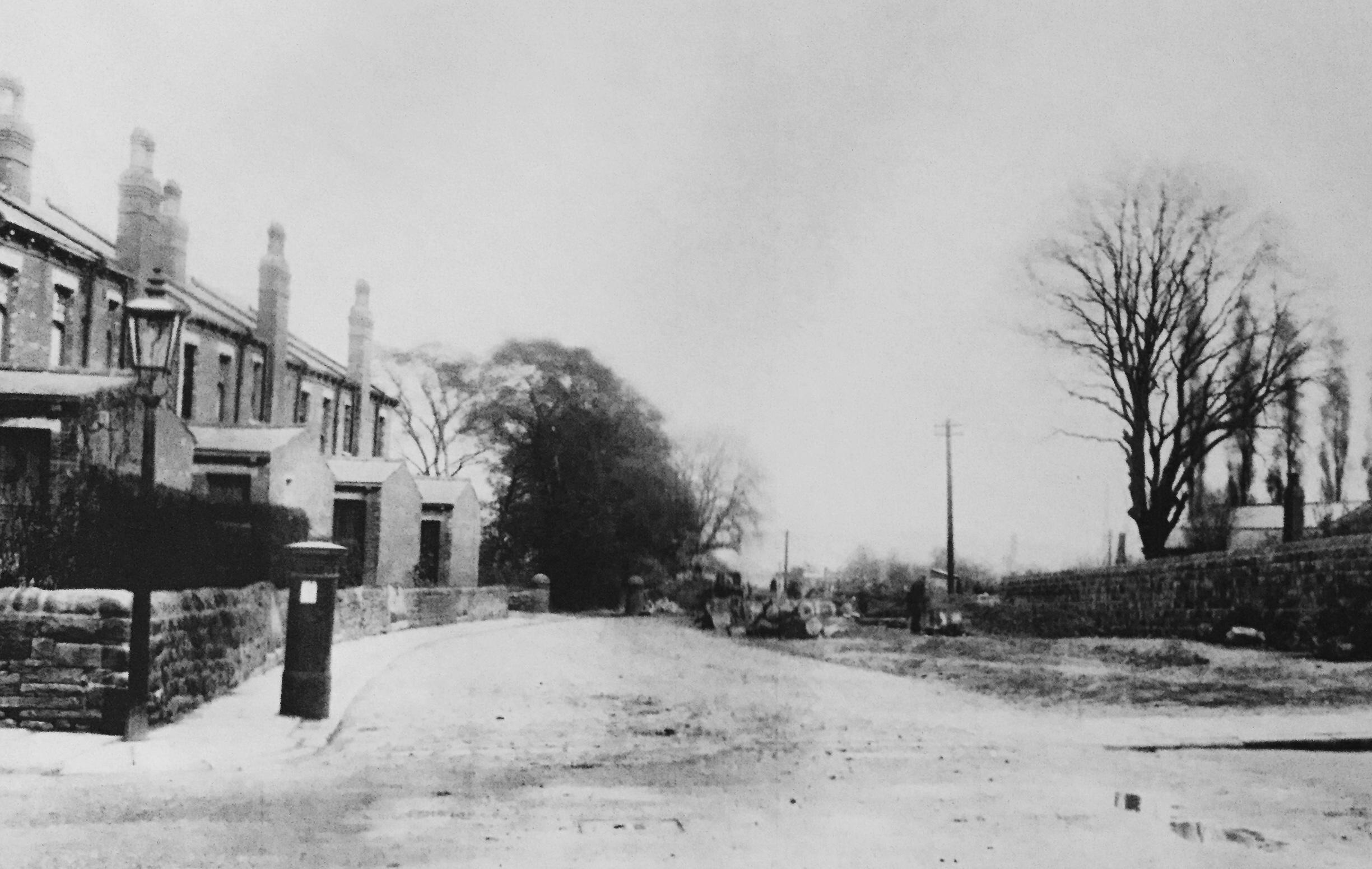 Grove Lane