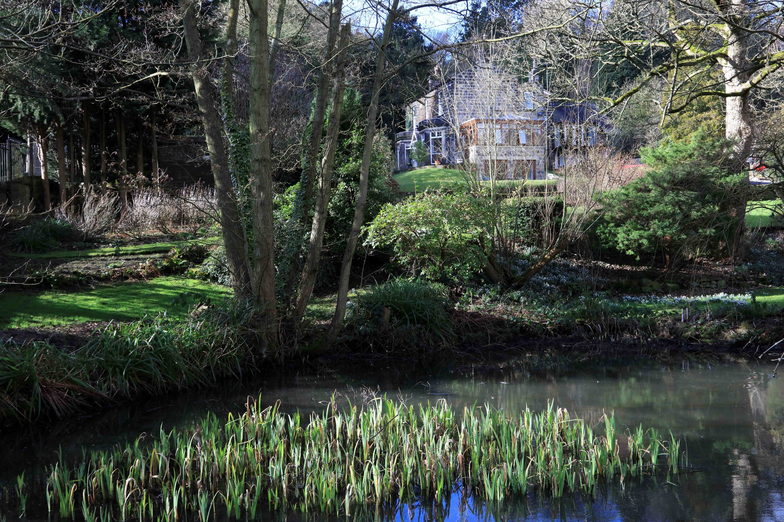 09  Rose Garth and mill pond © JHJ