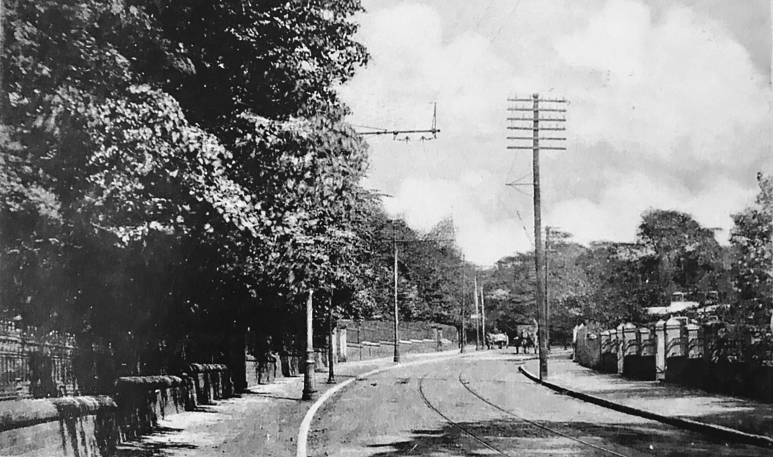Cardigan Road, towards Spring Road