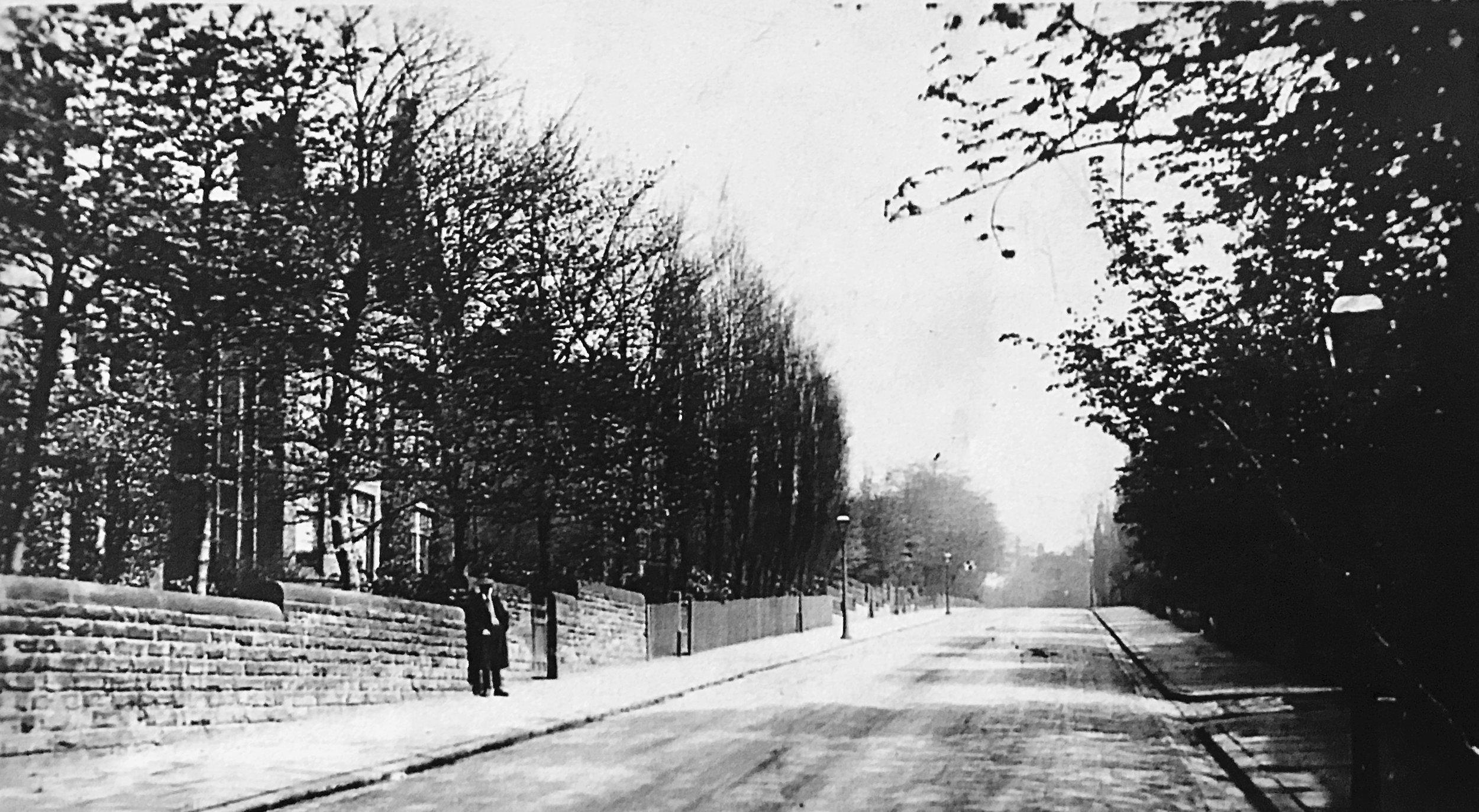 Bainbrigge Road, from Cardigan Road