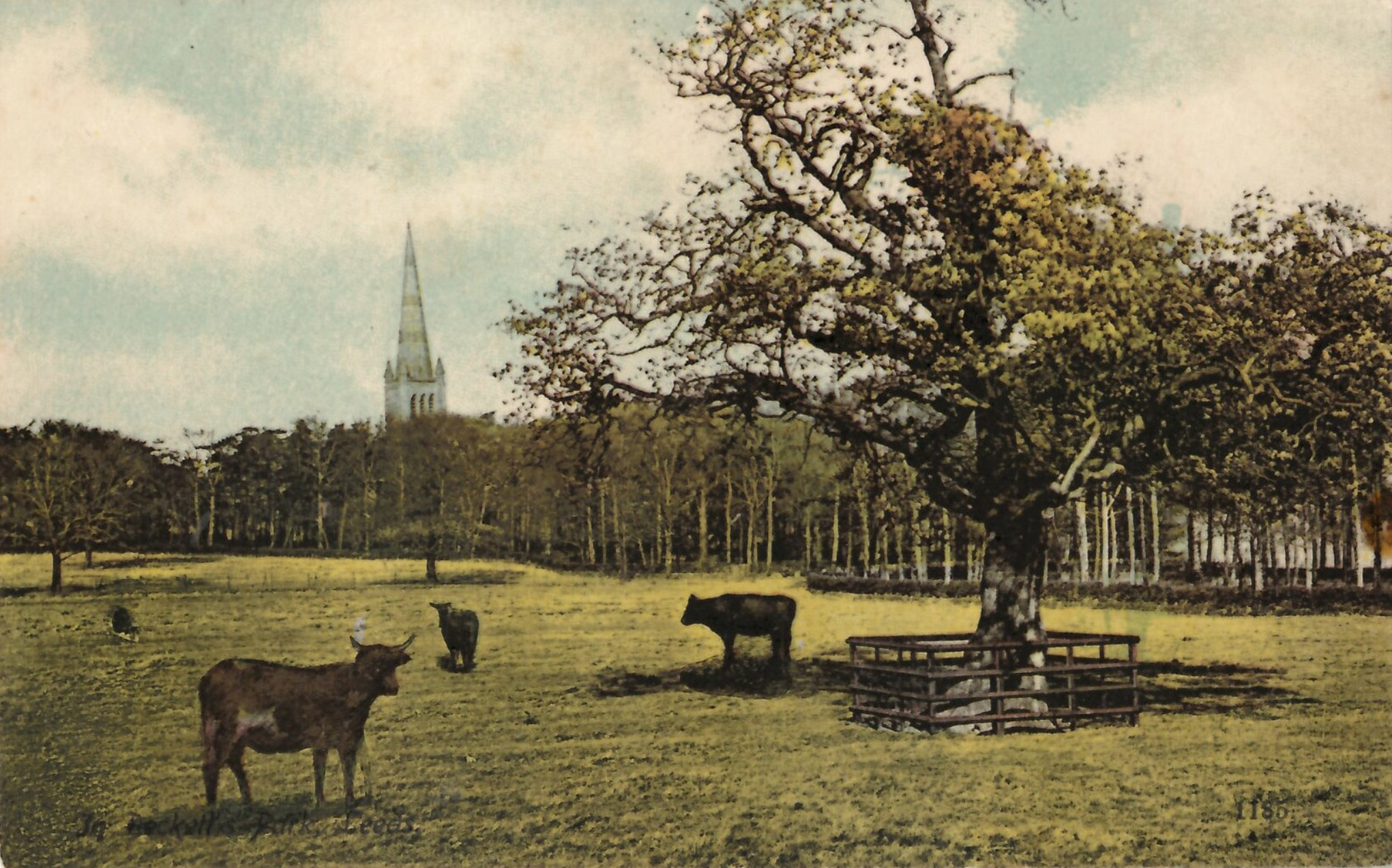 St Chad's Church, from South Lodge, Beckett Park, c1908