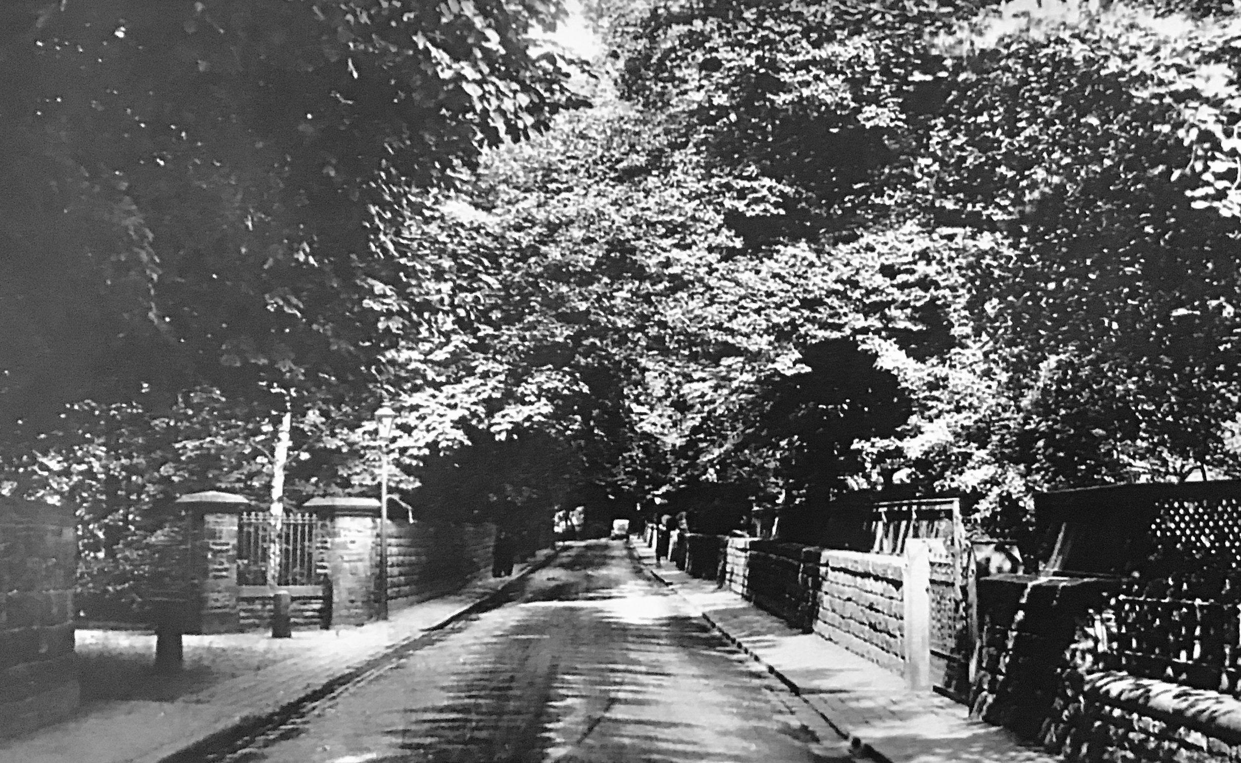 Wood Lane 1912