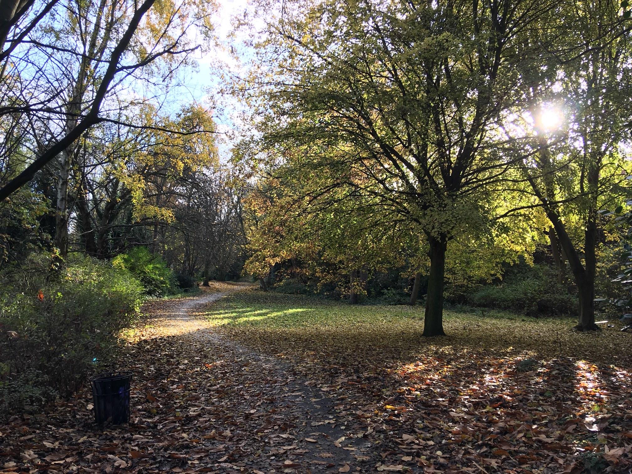 Dingley Dell (former Rock Garden), Woodhouse Ridge © RT