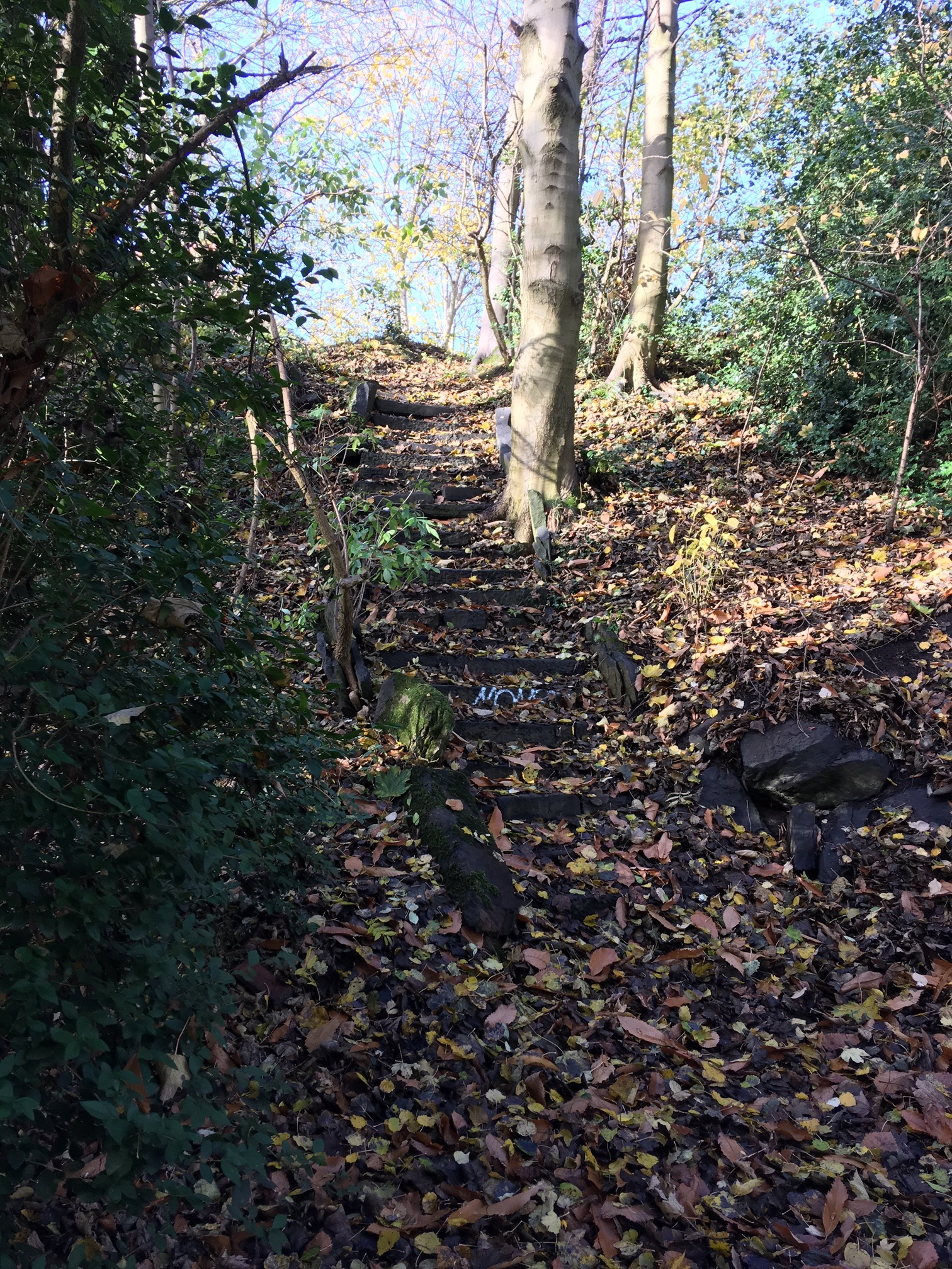 Steps to Table Top, Woodhouse Ridge © RT