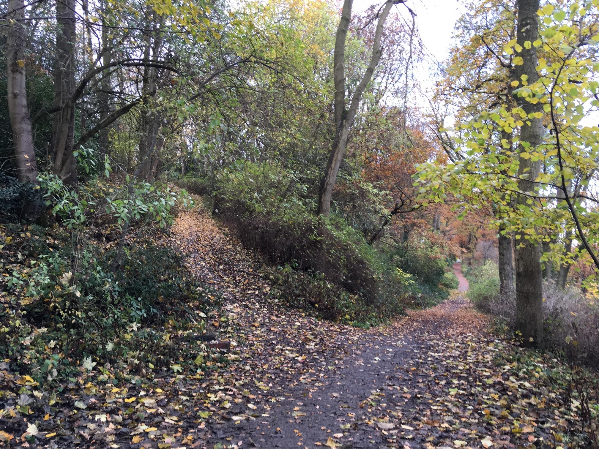 Middle Path, Woodhouse Ridge © RT