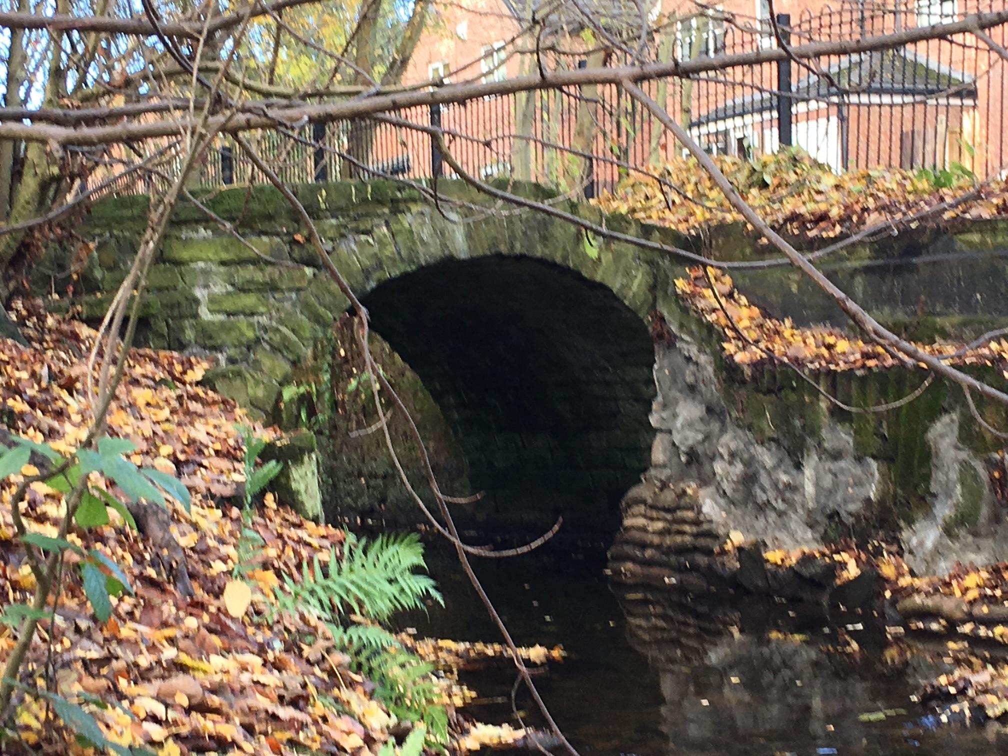 Packhorse Bridge, Meanwood Beck, below Woodhouse Ridge © RT
