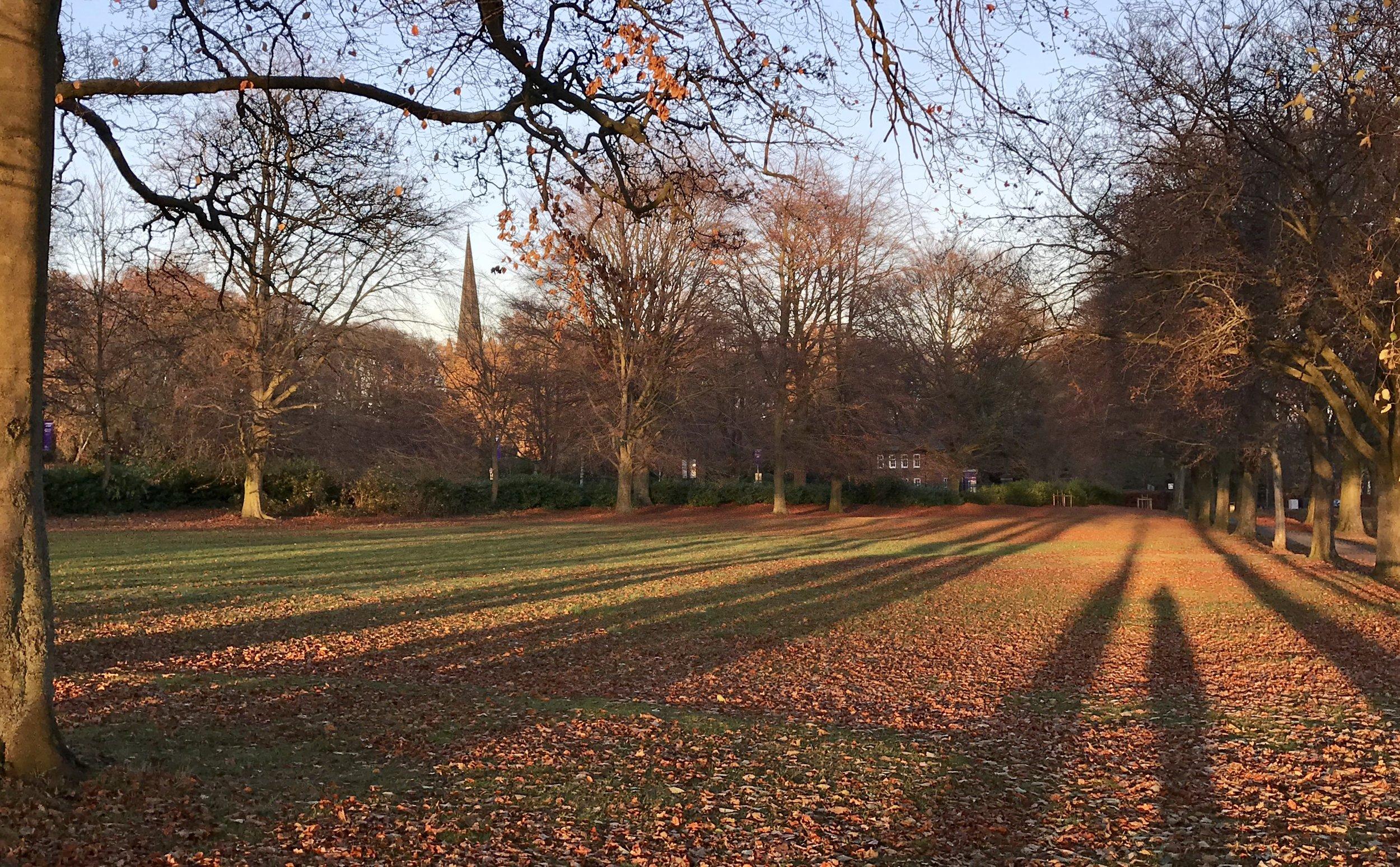 Beckett Park, towards St Chad's Church 2 © HP