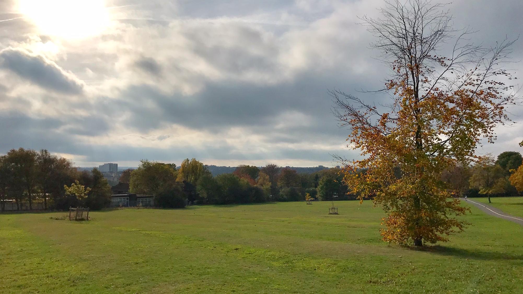 Beckett Park, towards Kirkstall 1 © HP
