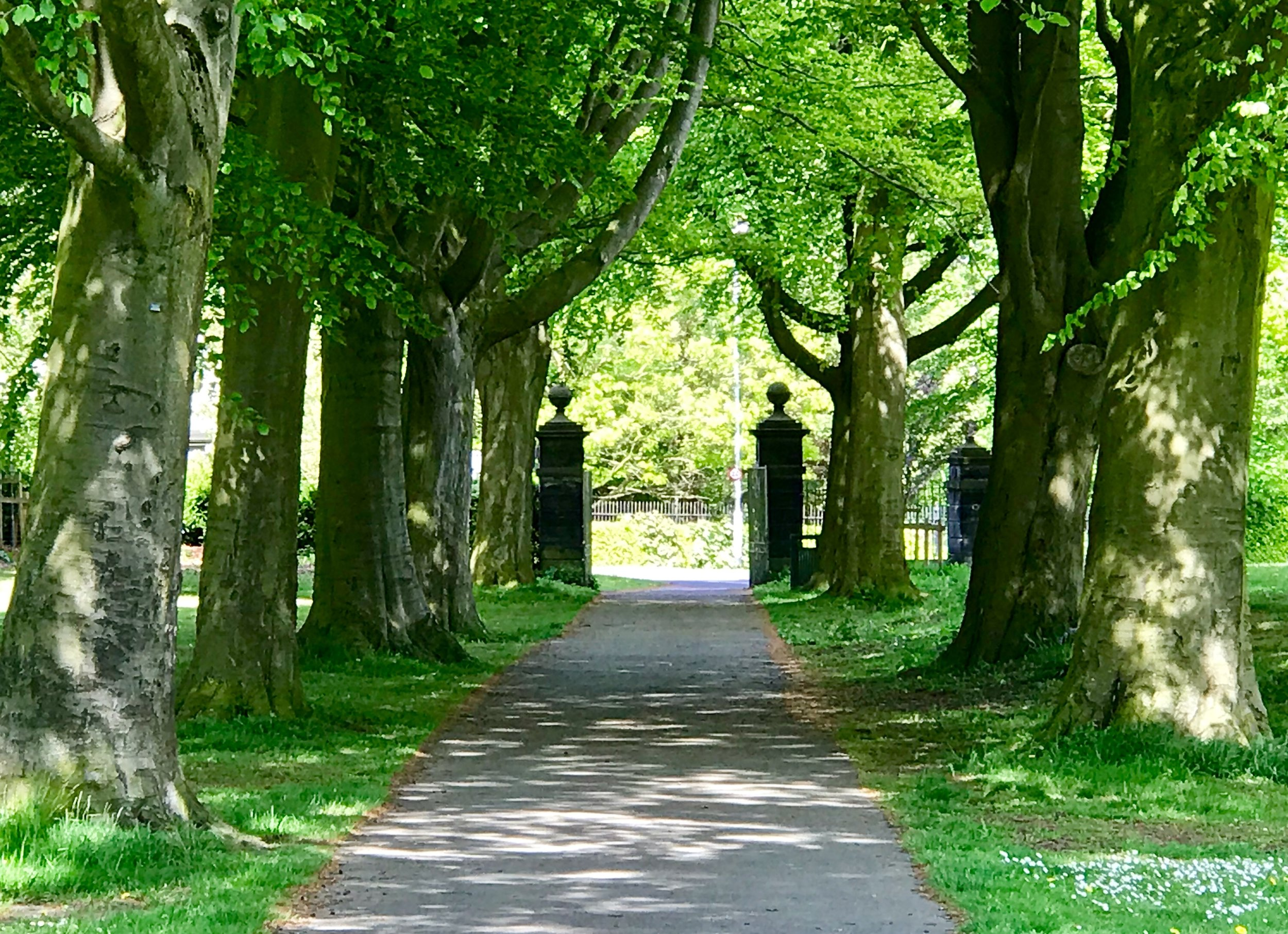 St Chad's Drive Entrance to Beckett Park © HP