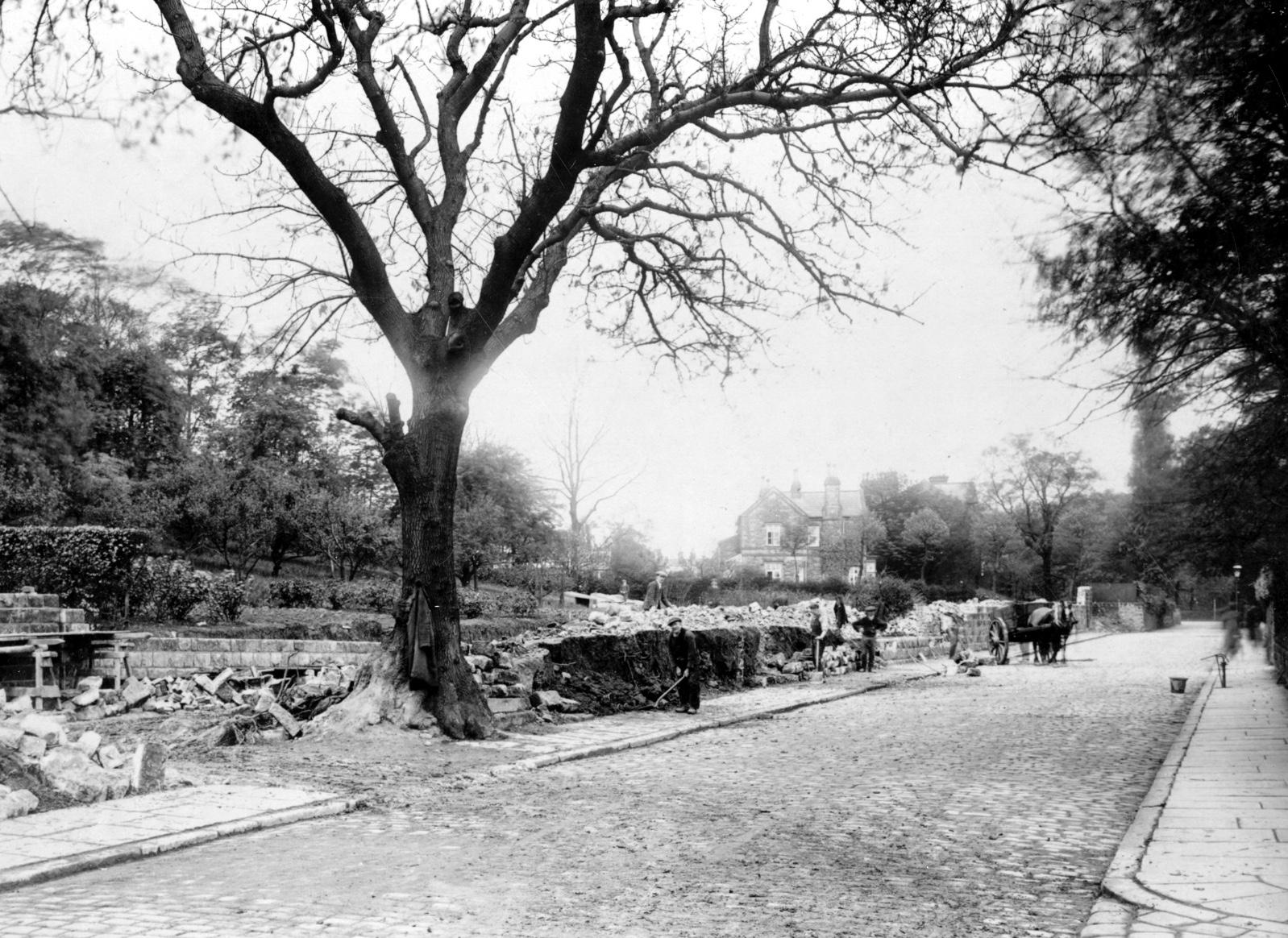 Grove Lane, 1923