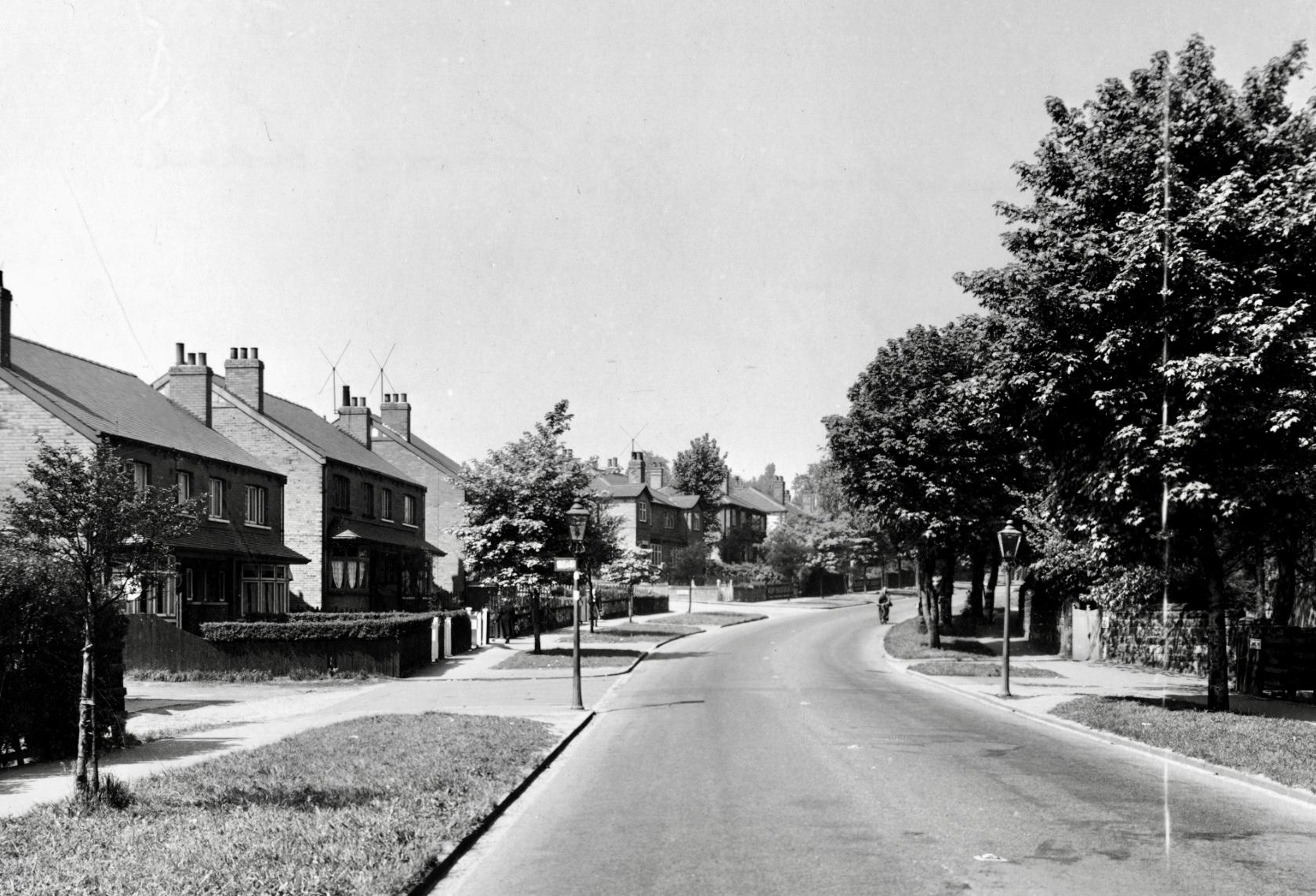 Grove Lane, 1955