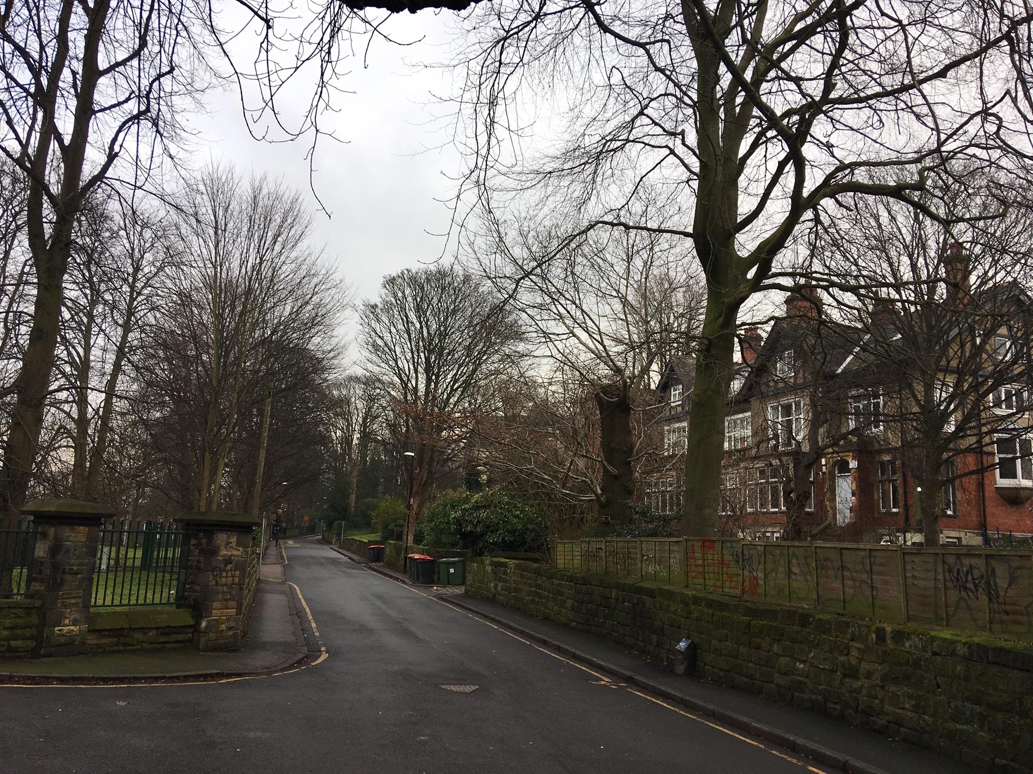 Wood Lane IMG_0130.JPG