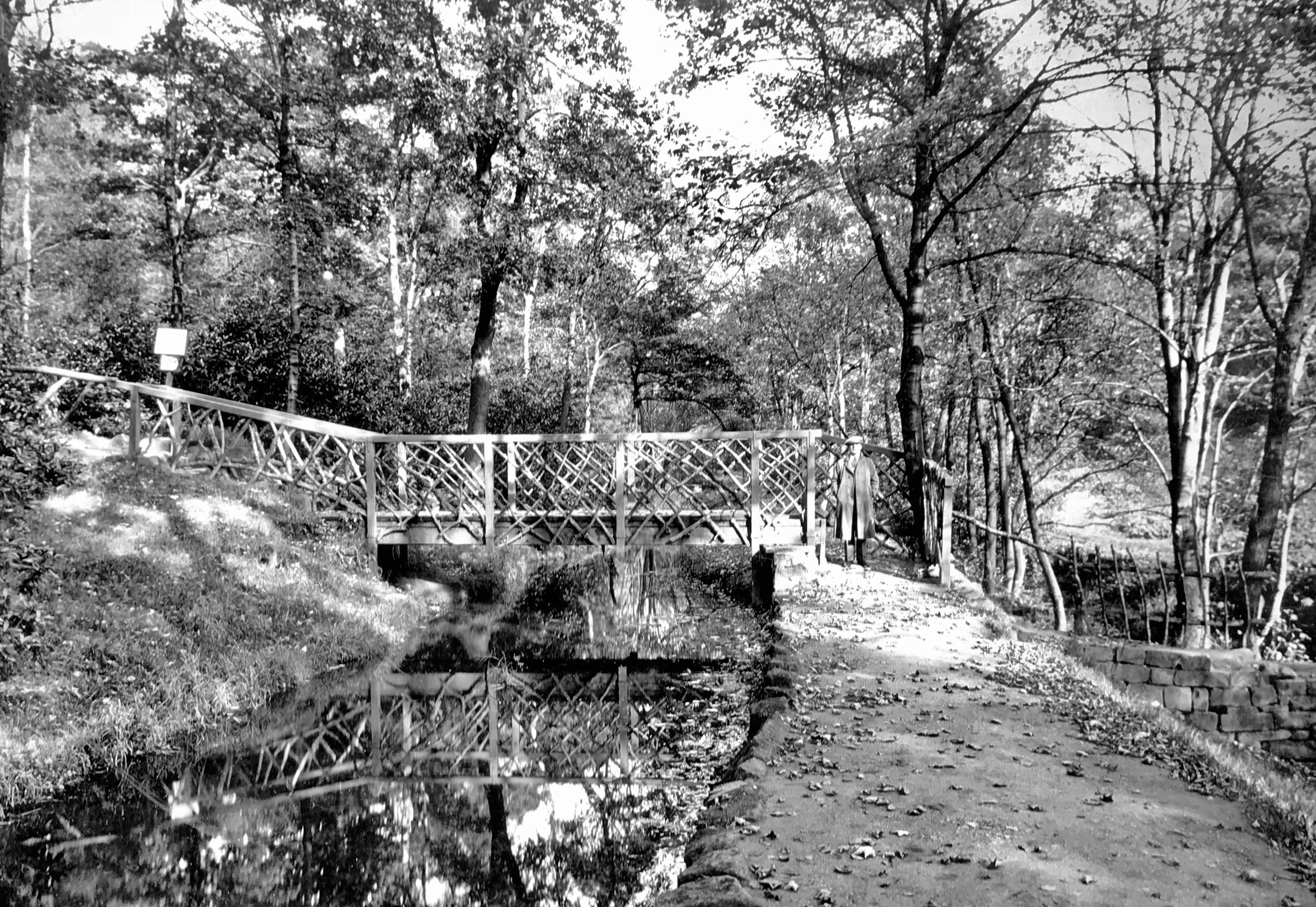 The Hollies, Bridge over Mill Stream, 1936