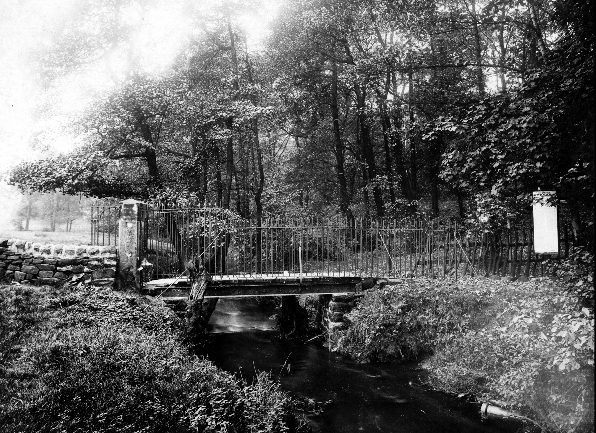 The Hollies, New Bridge with Iron Railings, 1927