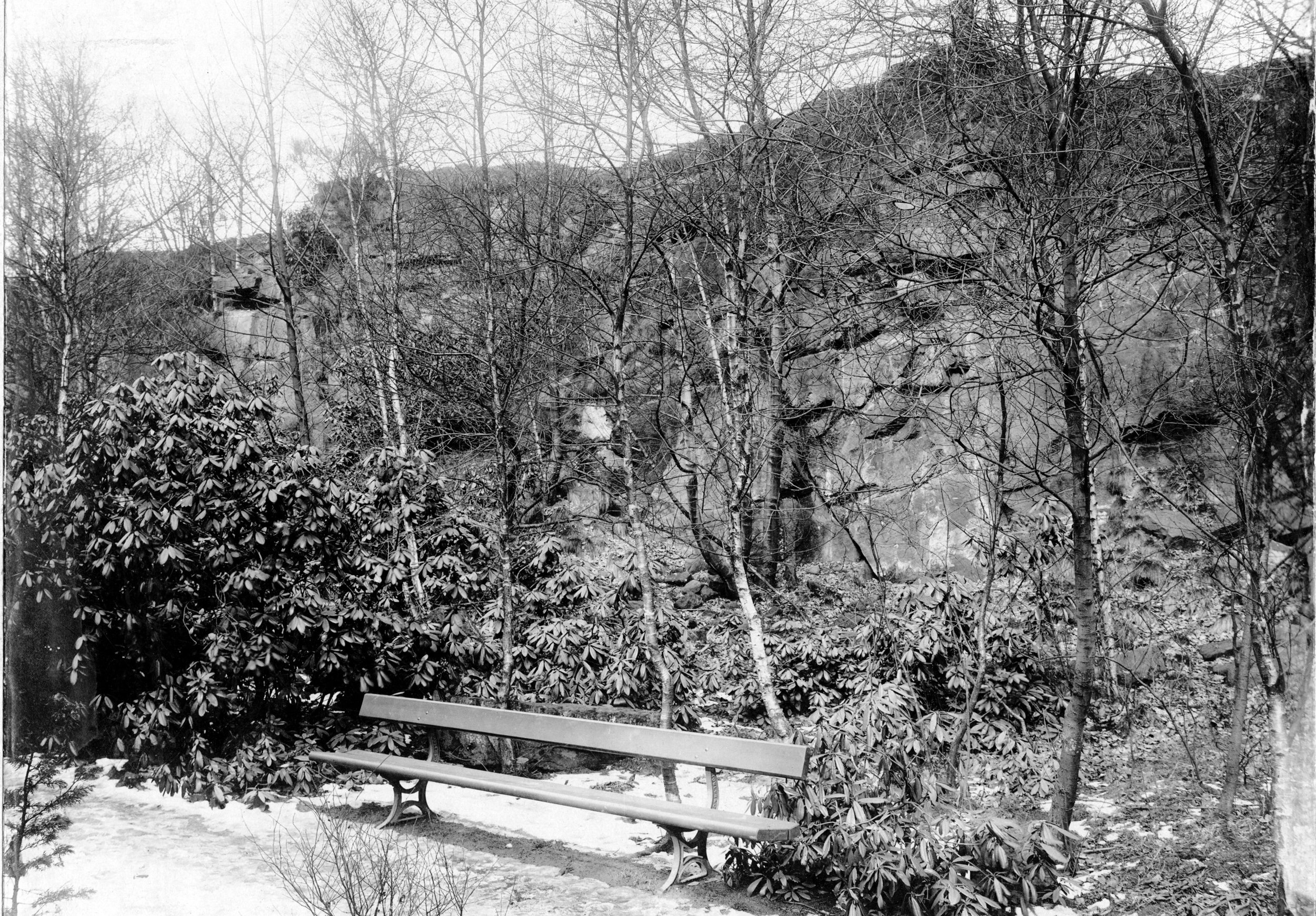 The Hollies, the Ravine, 1924