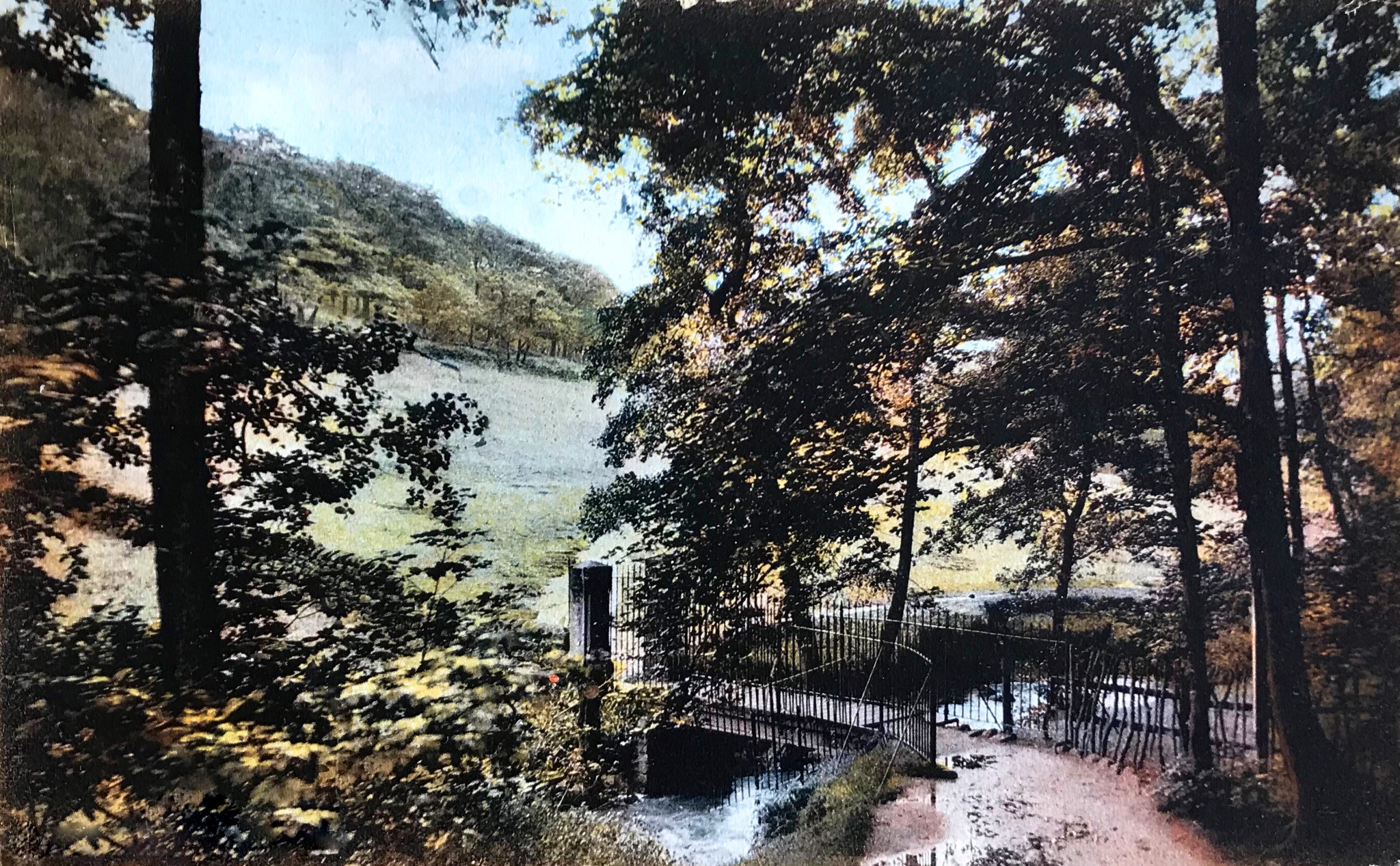The Hollies, New Bridge with Iron Railings, undated
