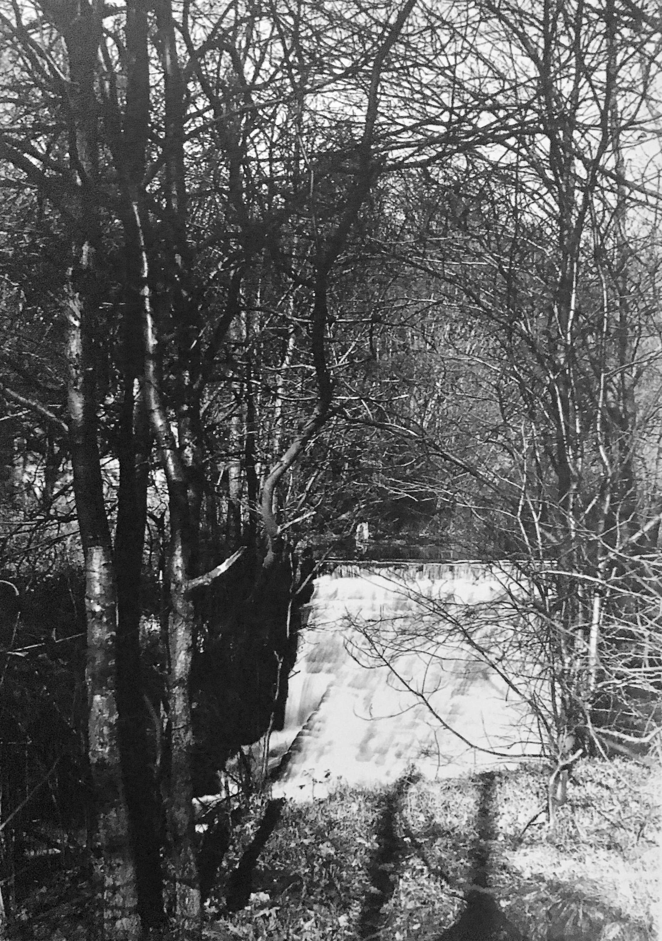 Meanwood Beck with Weir, 1887