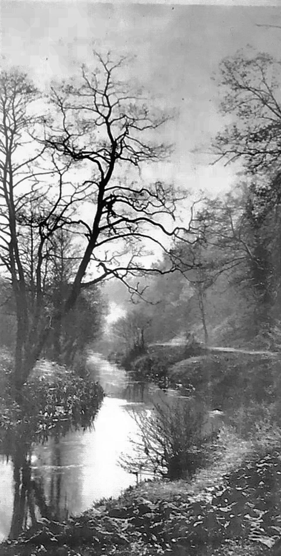 Meanwood Beck, Circa 1906