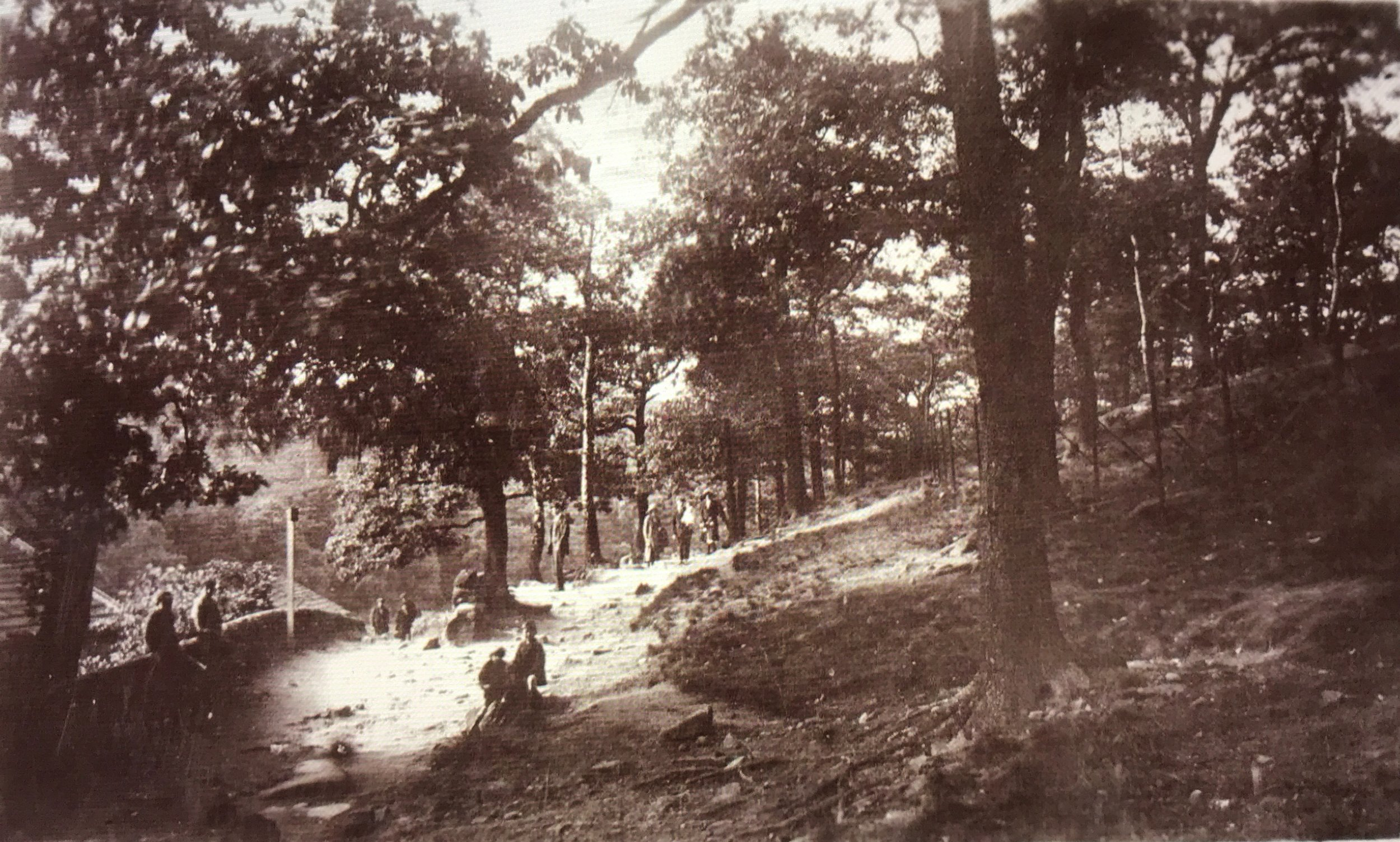Path past Hustler's Row and to the Quarry, Early 1900s