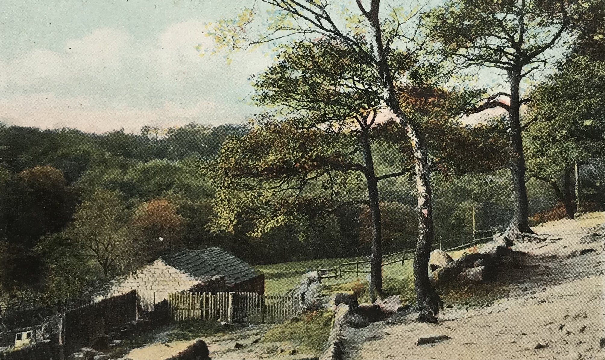 Path into Meanwood Woods, 1929