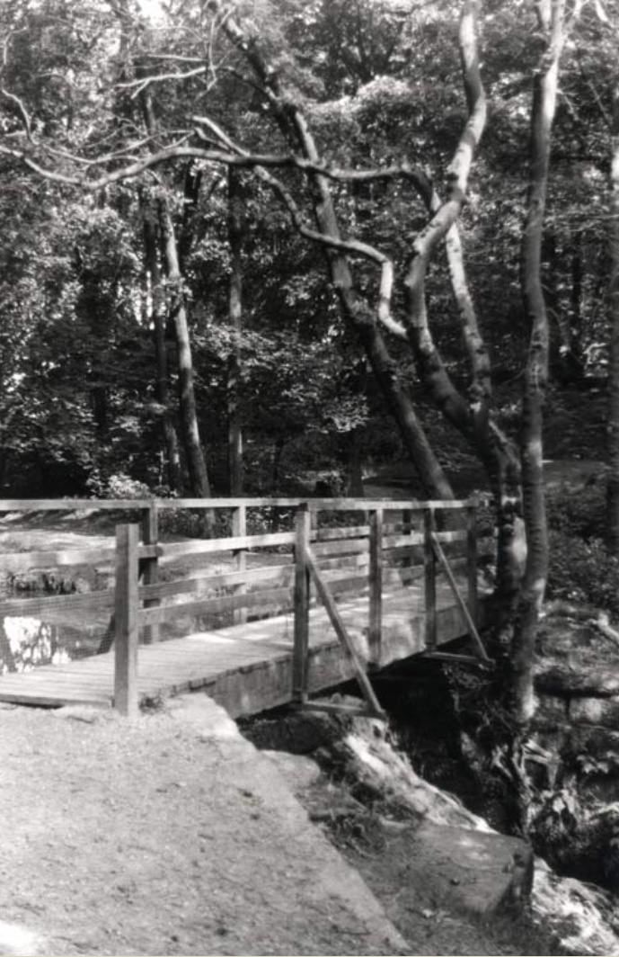 Wooden Bridge over Meanwood Beck, 1986