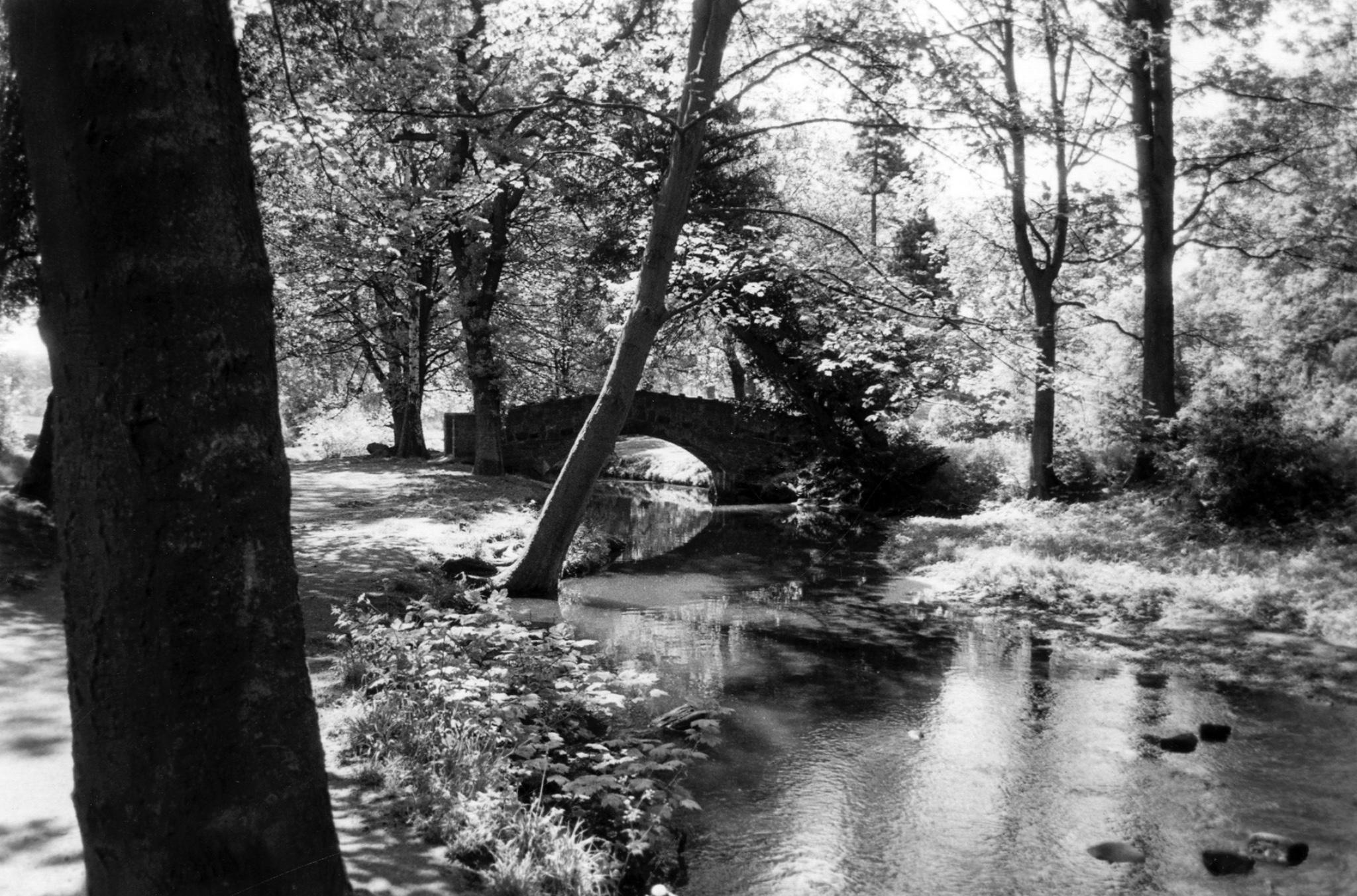 Venetian Bridge in American Garden, 1985