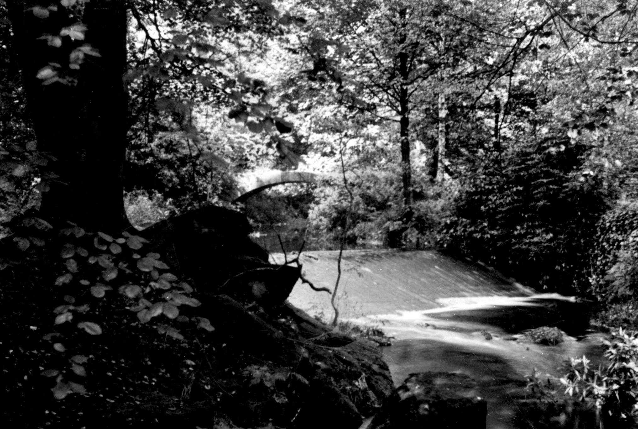 Venetian Bridge and Weir, American Garden, 1985