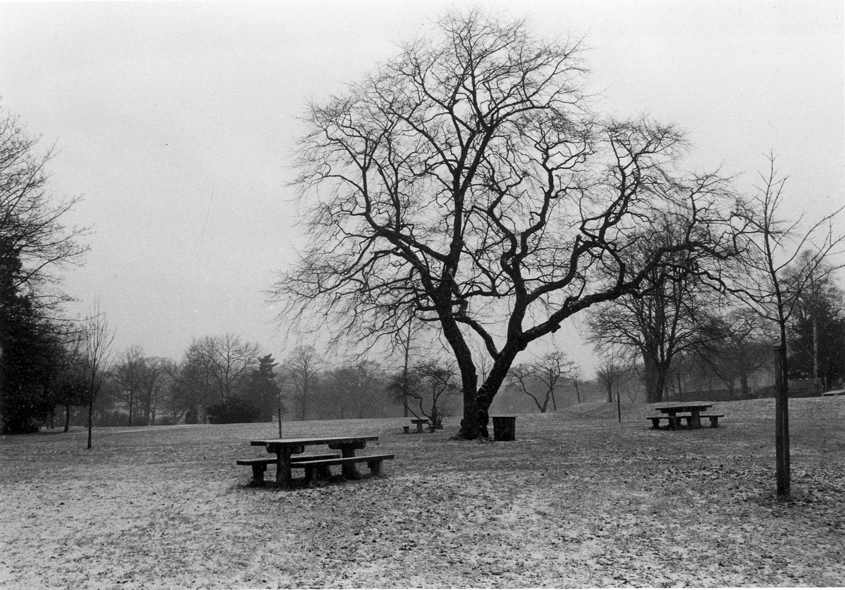 Meanwood Park with Picnic Tables, 1986