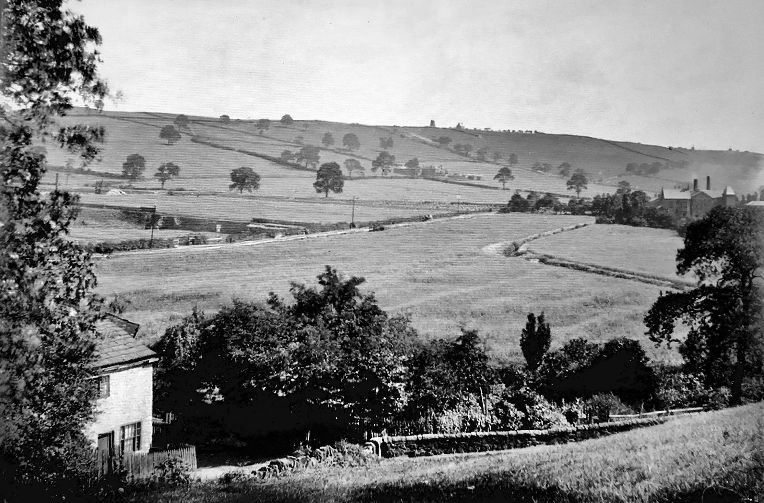 Bottom Meadows, Woodhouse Ridge, from Woodland Dye Works [demolished], 1888