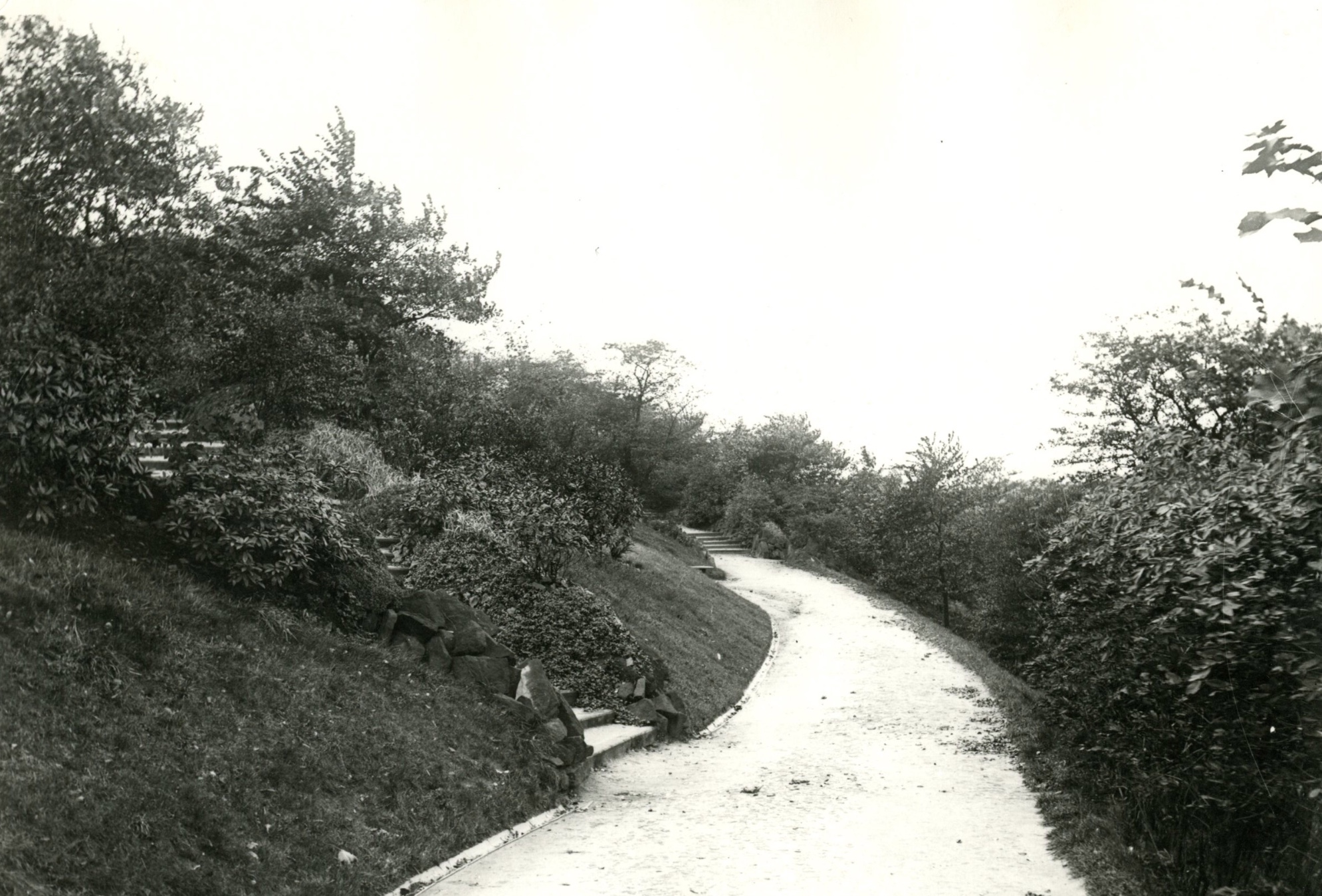 The Rockery, Woodhouse Ridge, undated