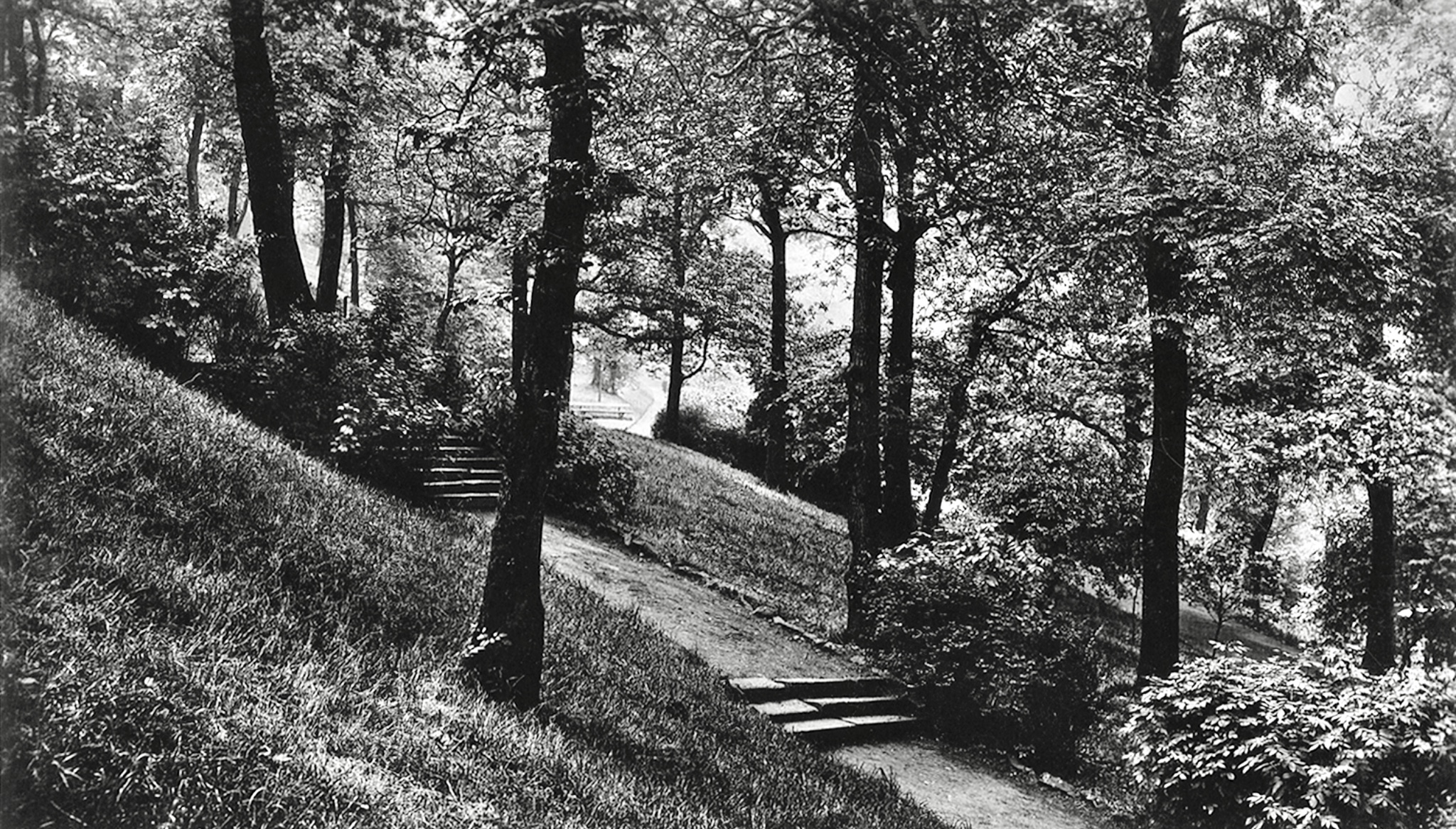 Woodhouse Ridge, Paths and Steps, 1915