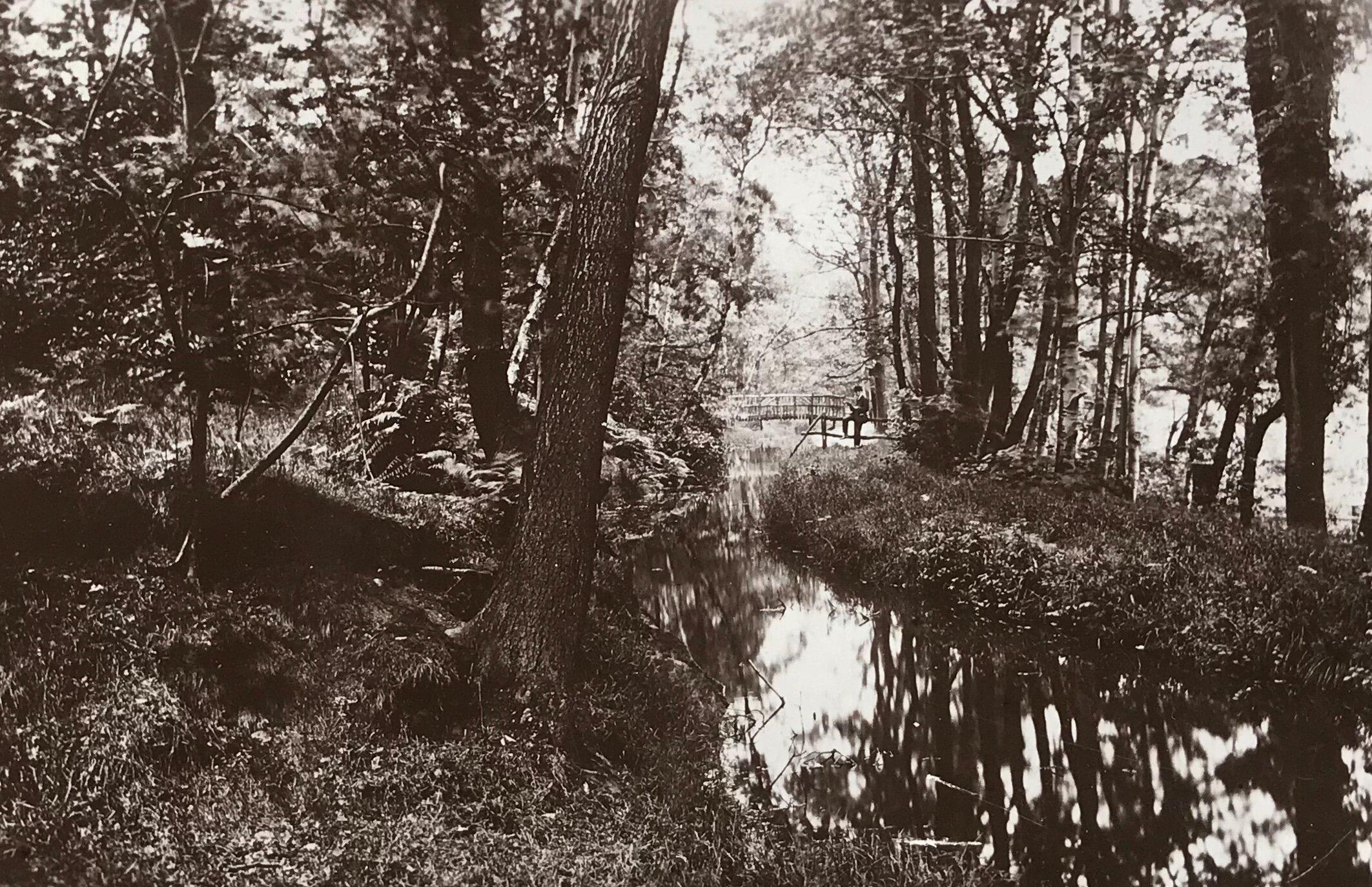 17  Mill Stream, The Hollies, circa 1920s