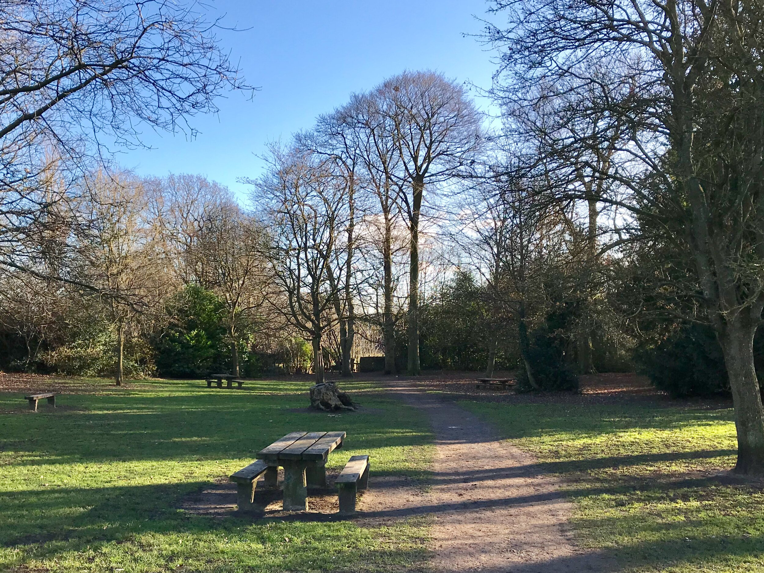 Picnic Benches, Meanwood Park © HP